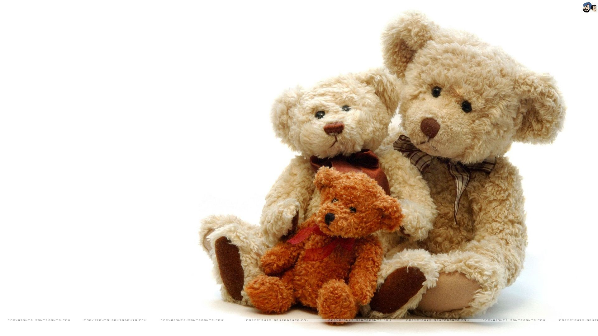 Res: 1920x1080, Teddy Bear Wallpapers by Spring Doughty on Wallpapers and Pictures – free  download