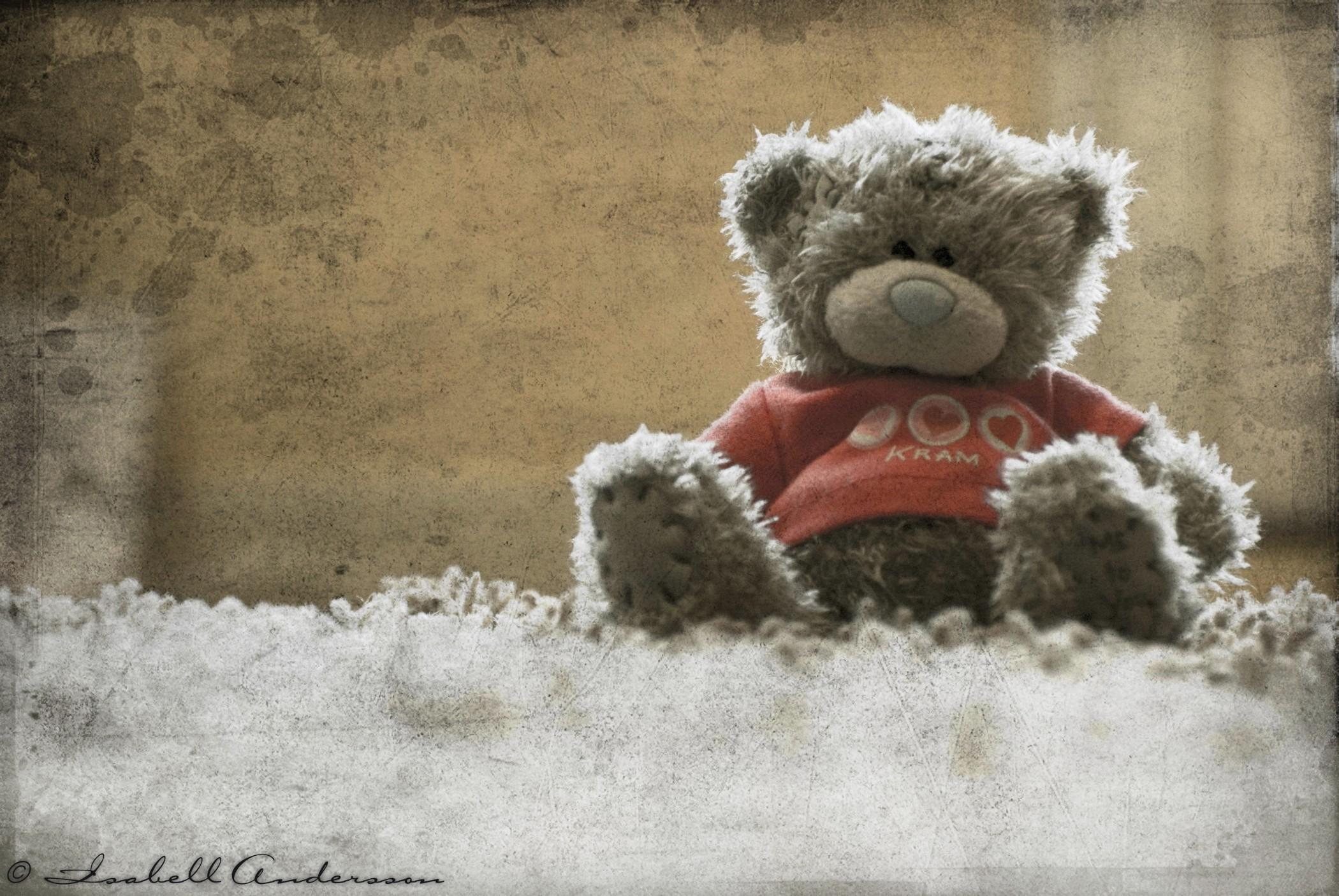 Res: 2100x1406, Teddy Bear Wallpaper Iphone HD