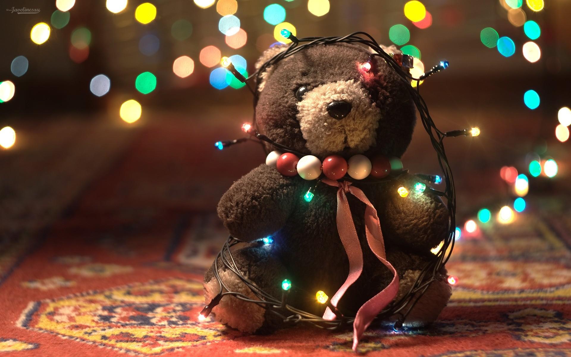 Res: 1920x1200, Adorable Teddy Bear