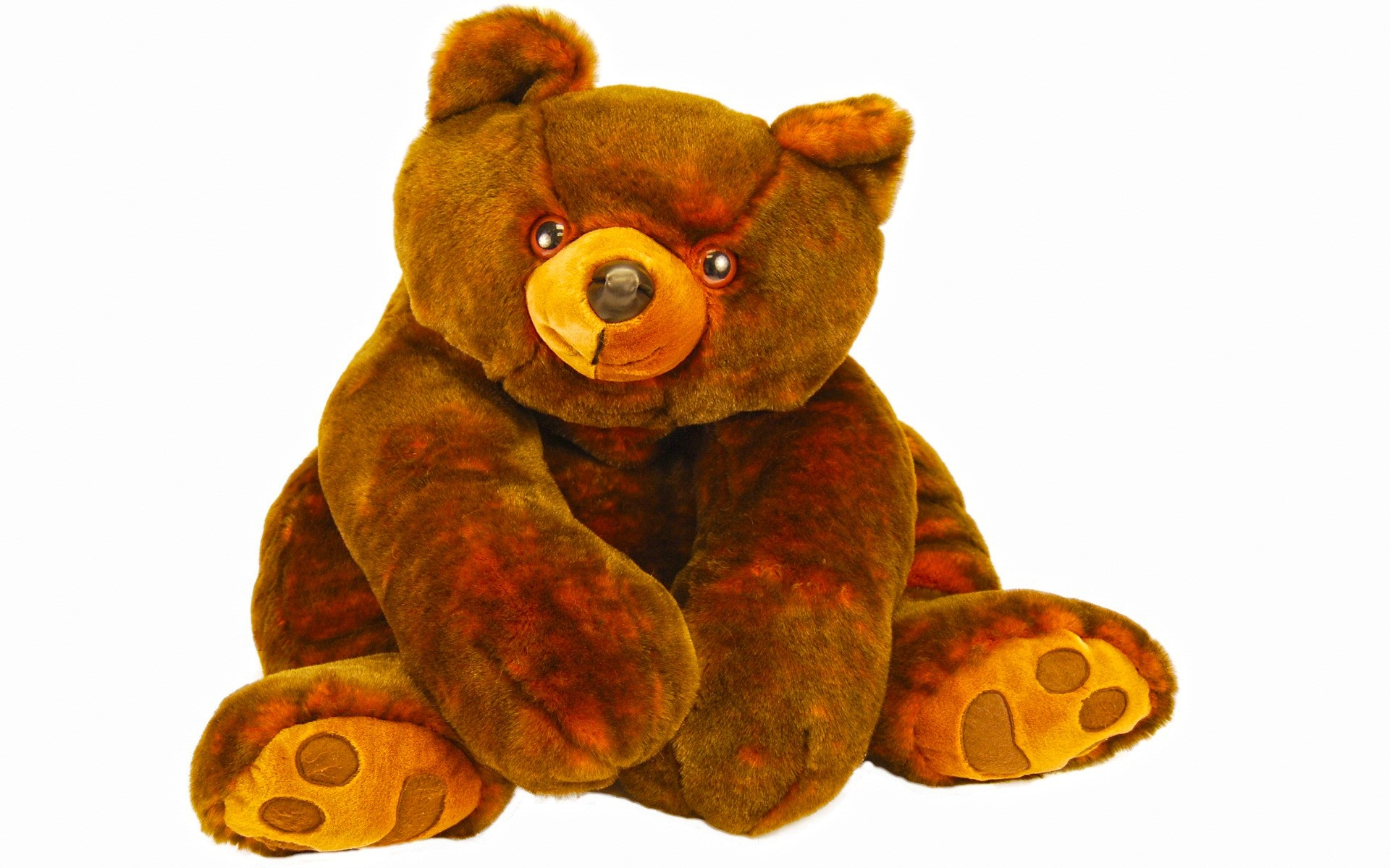 Res: 1920x1200, Funny teddy bear wallpaper