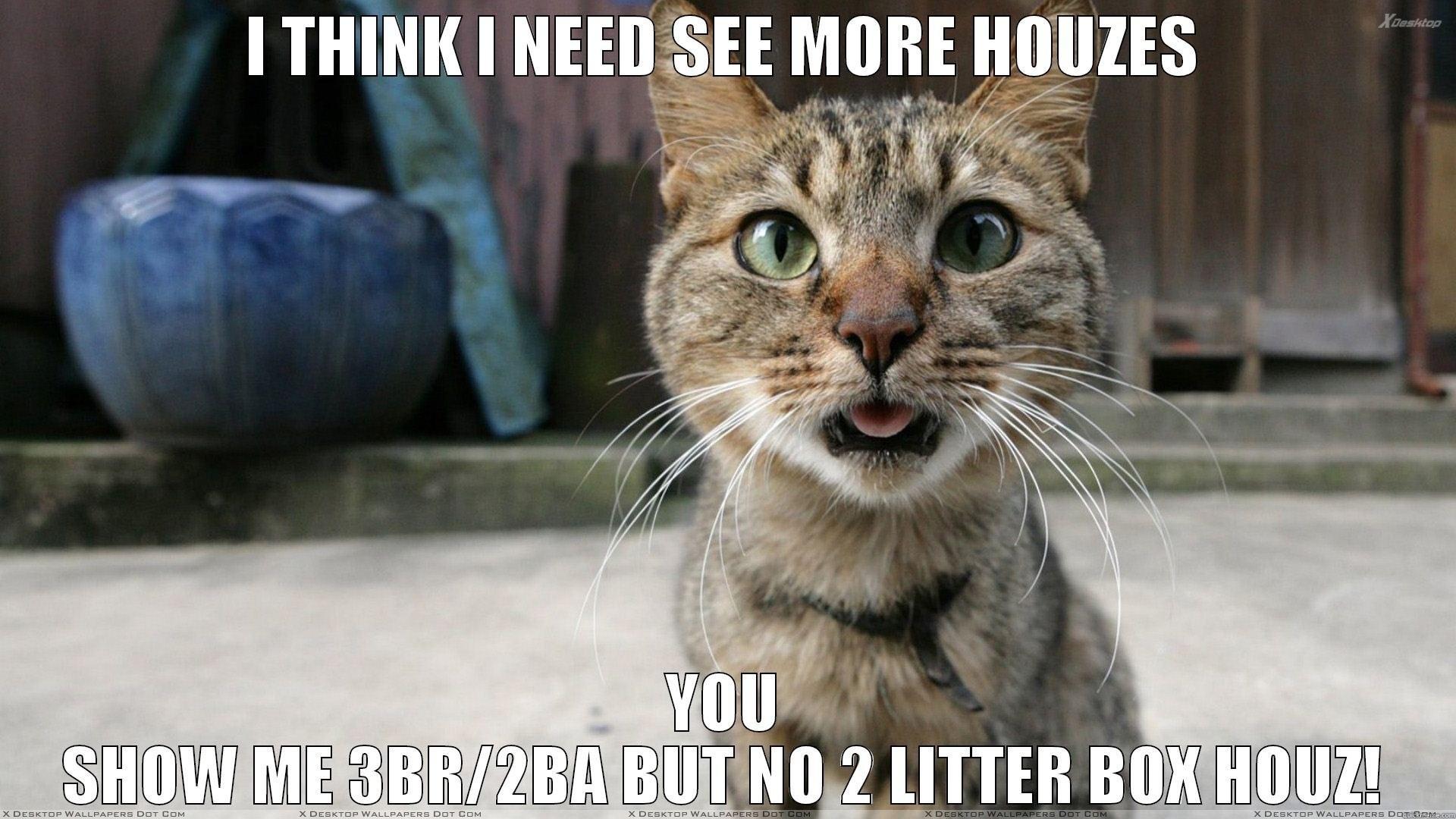 Res: 1920x1080, Cat meme quote funny humor grumpy (91) wallpaper |  | 355180 |  WallpaperUP