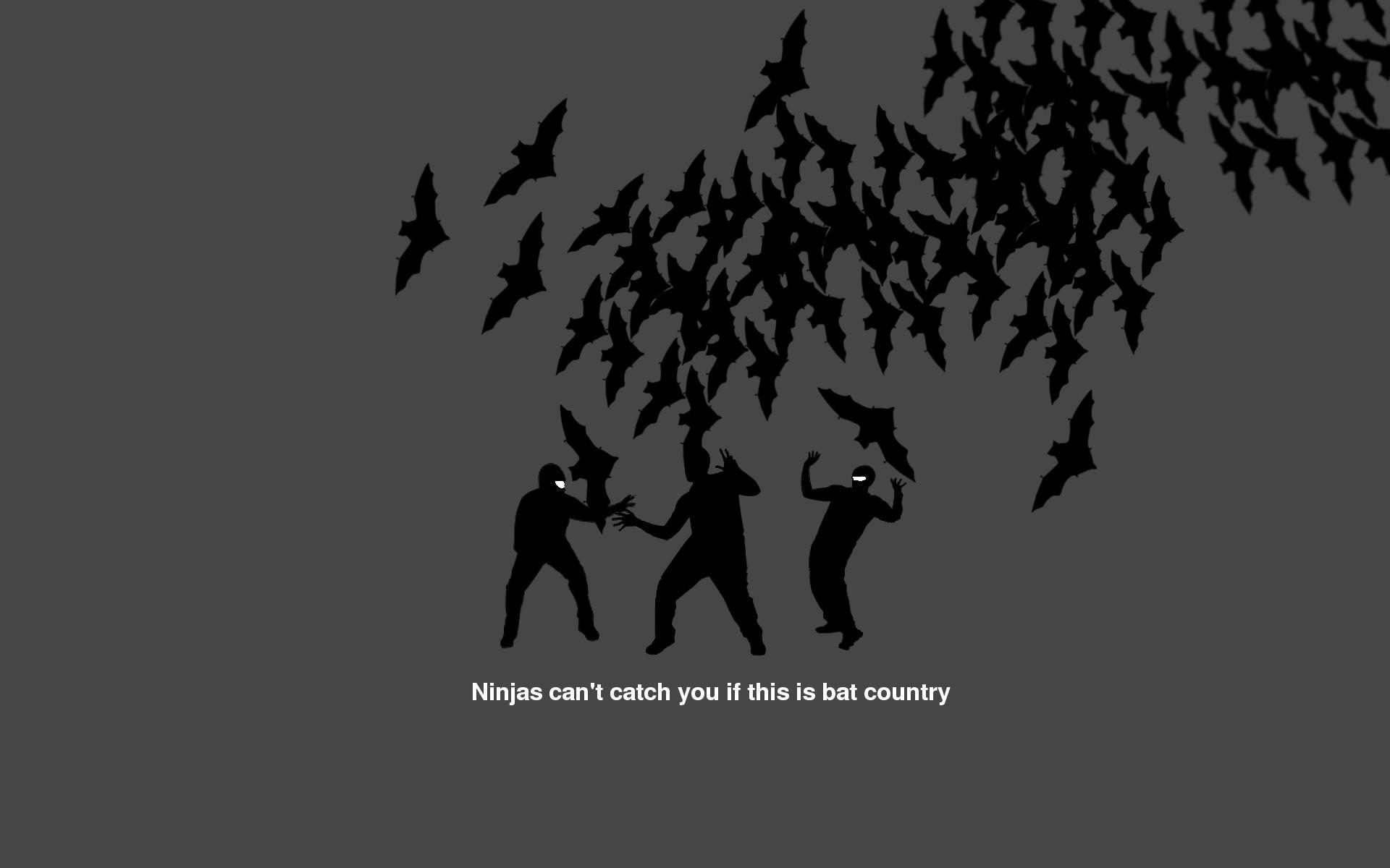 Res: 1920x1200, Humor - Ninja Wallpaper