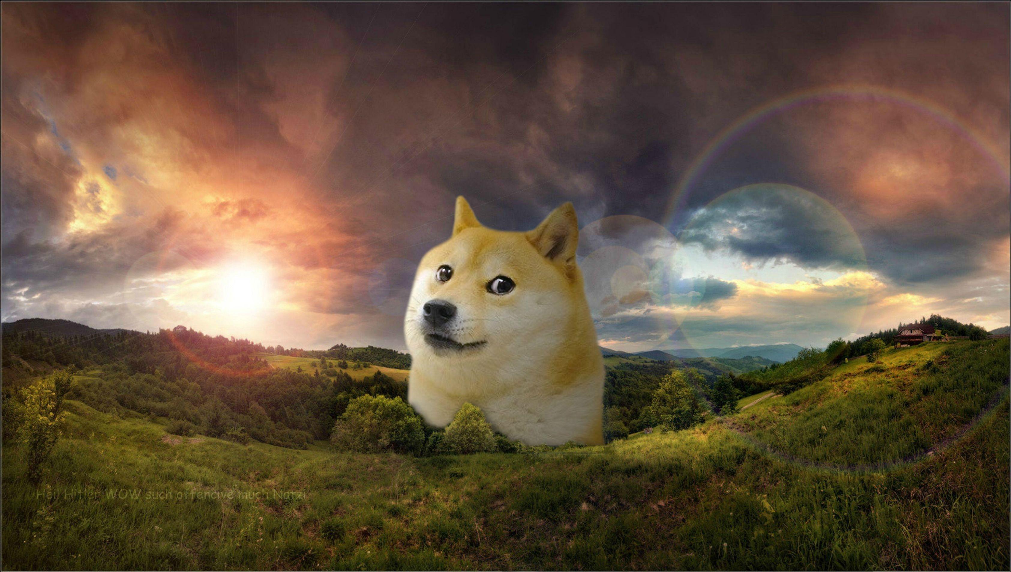 Res: 3370x1909, Doge Meme Wallpaper