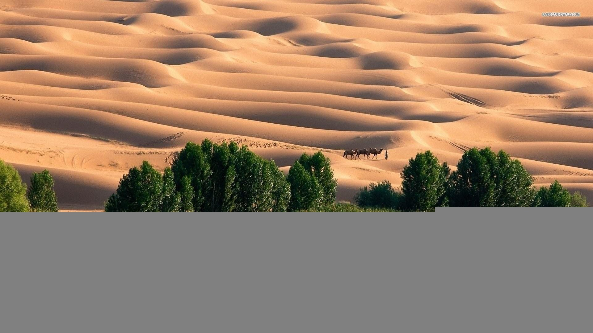 Res: 1920x1080, oasis wallpaper hd #721119