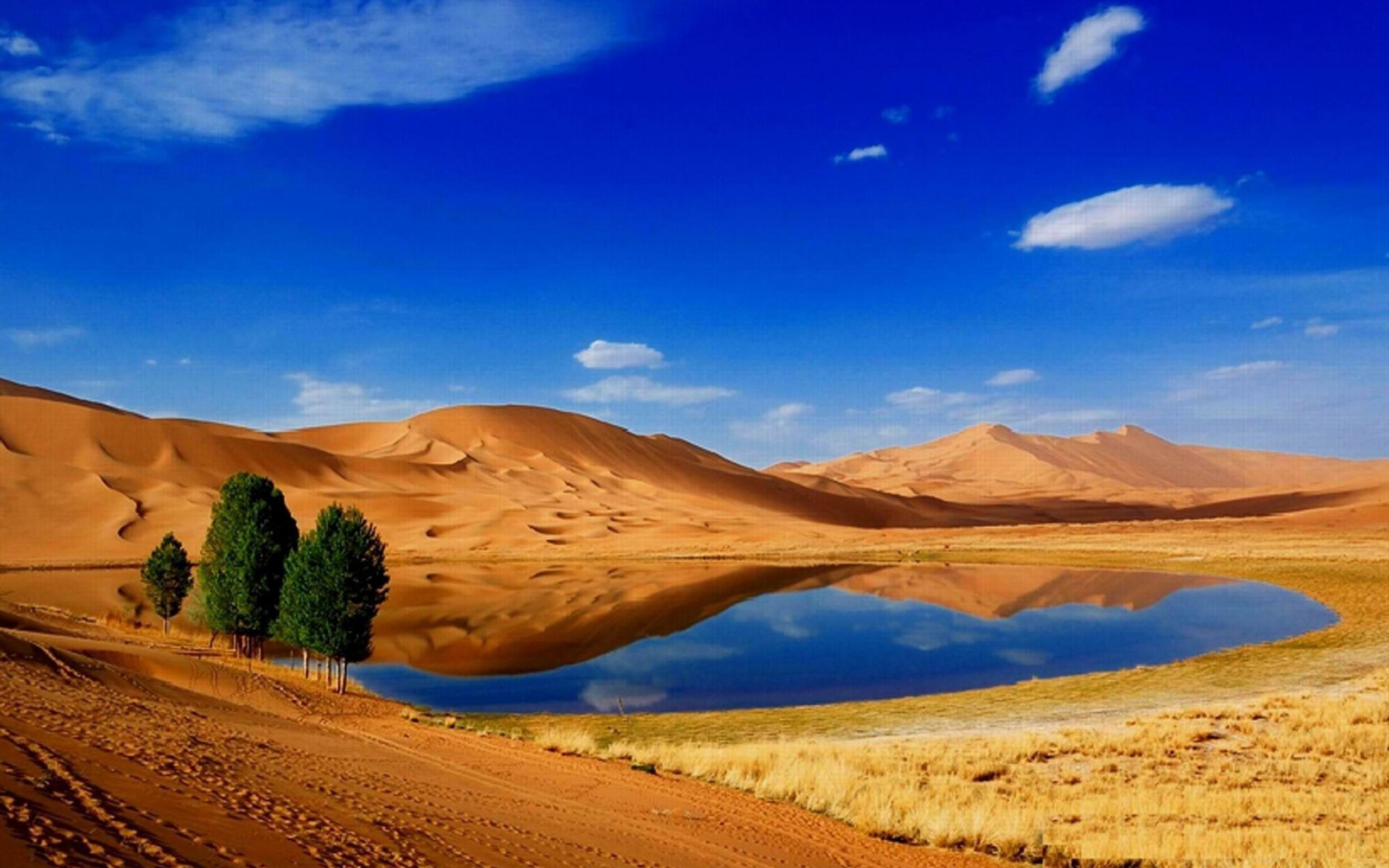 Res: 2560x1600, Desert Oasis Wallpaper (, vr.17) ...