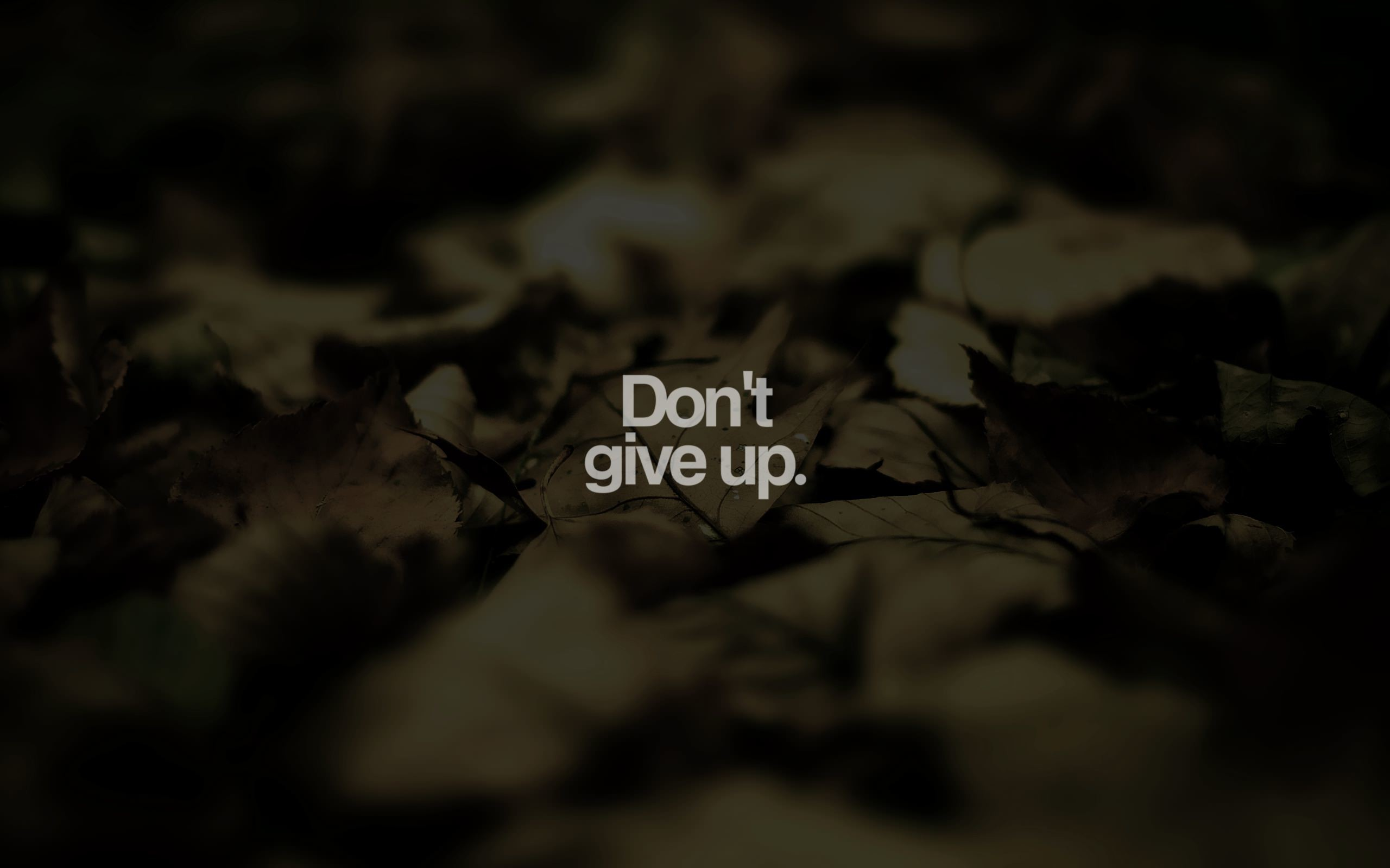Res: 2560x1600, Don't give up.