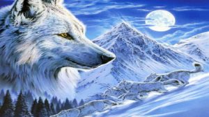 Ice Wolf wallpapers