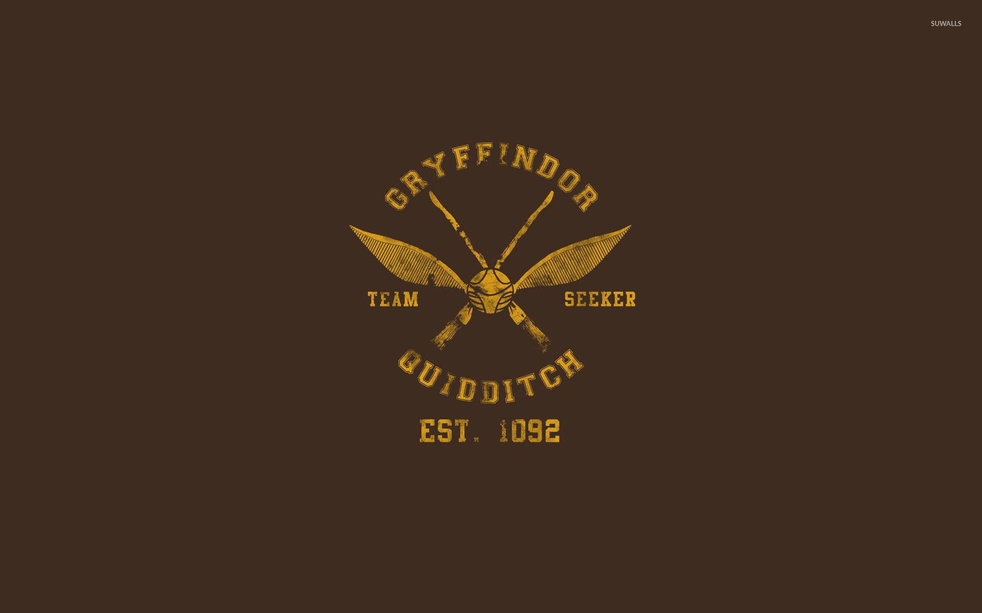 Res: 1920x1200, Gryffindor Quidditch team wallpaper