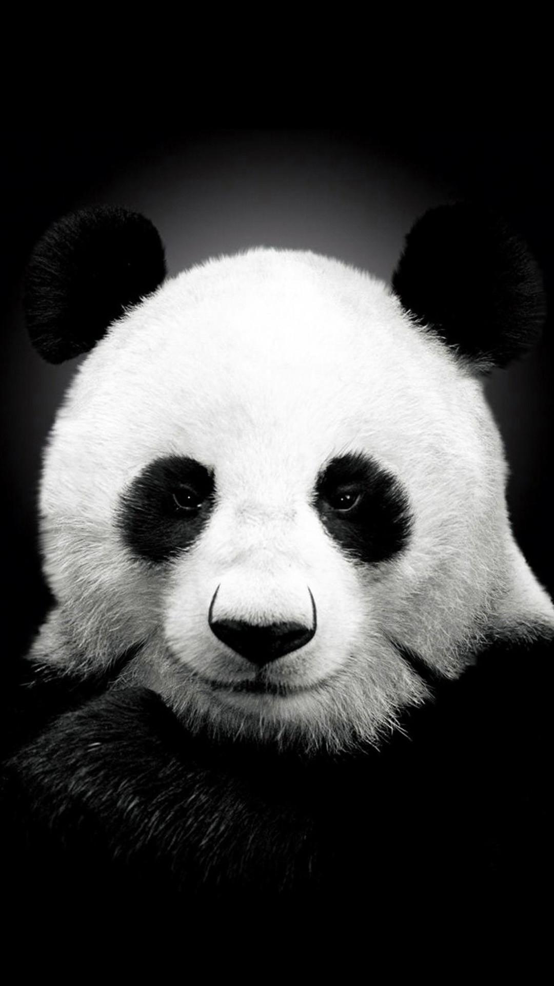 Res: 1080x1920, Panda