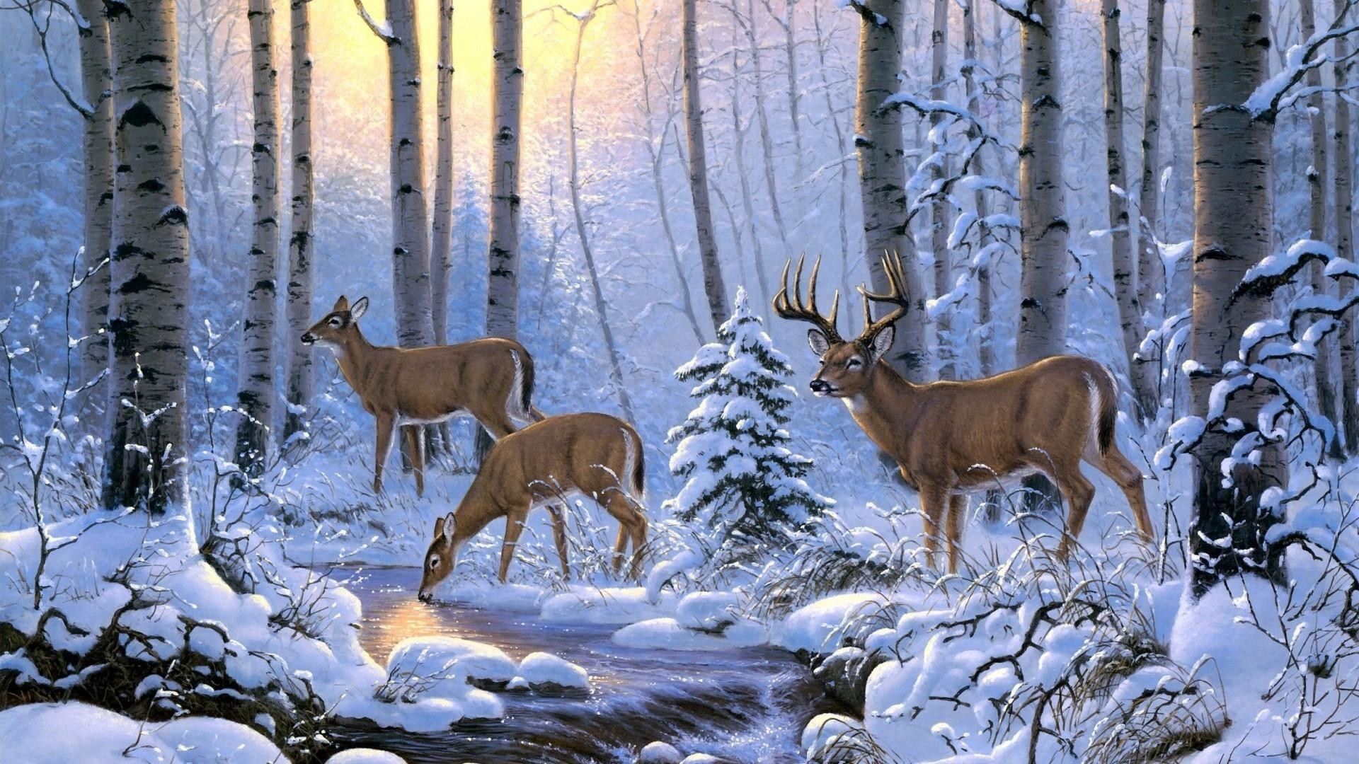 Res: 1920x1080, Whitetail Deer In Snow - Painting Art Wallpaper   Wallpaper Studio 10    Tens of thousands HD and UltraHD wallpapers for Android, Windows and Xbox