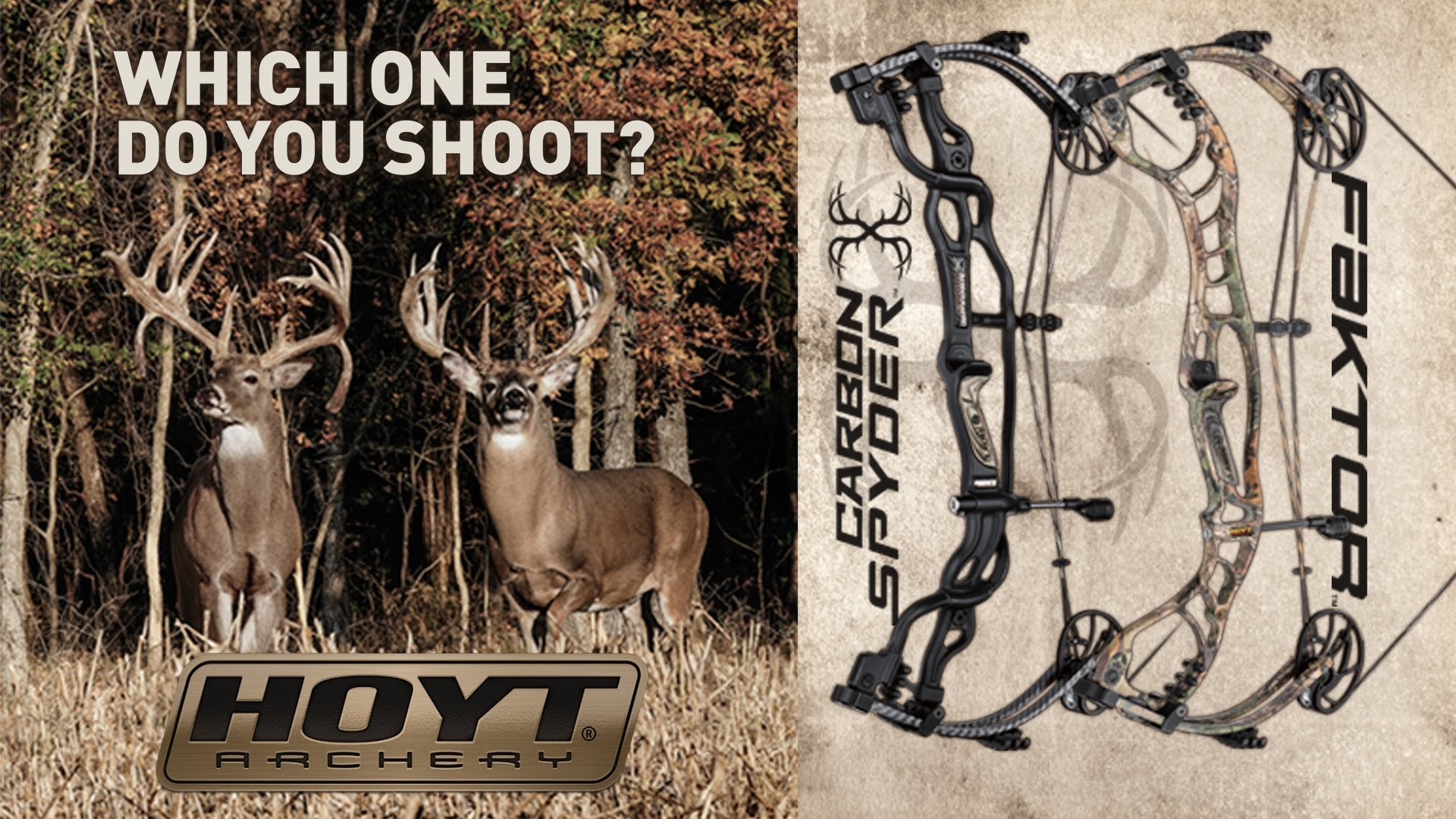 Res: 1920x1080, Hoyt Archery WHICH ONE DO YOU SHOOT