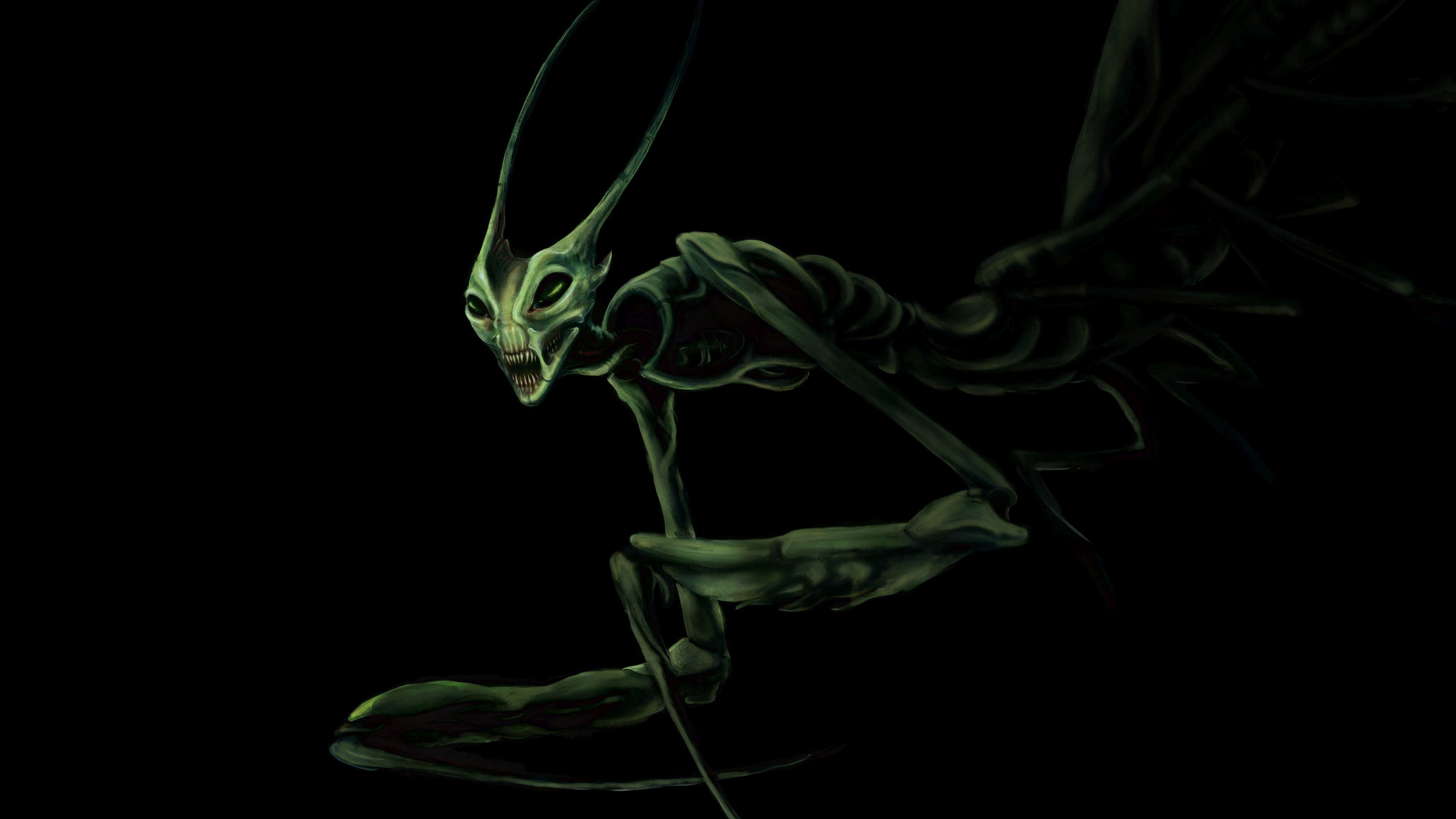 Res: 3840x2160, Praying Mantis Wallpaper 80
