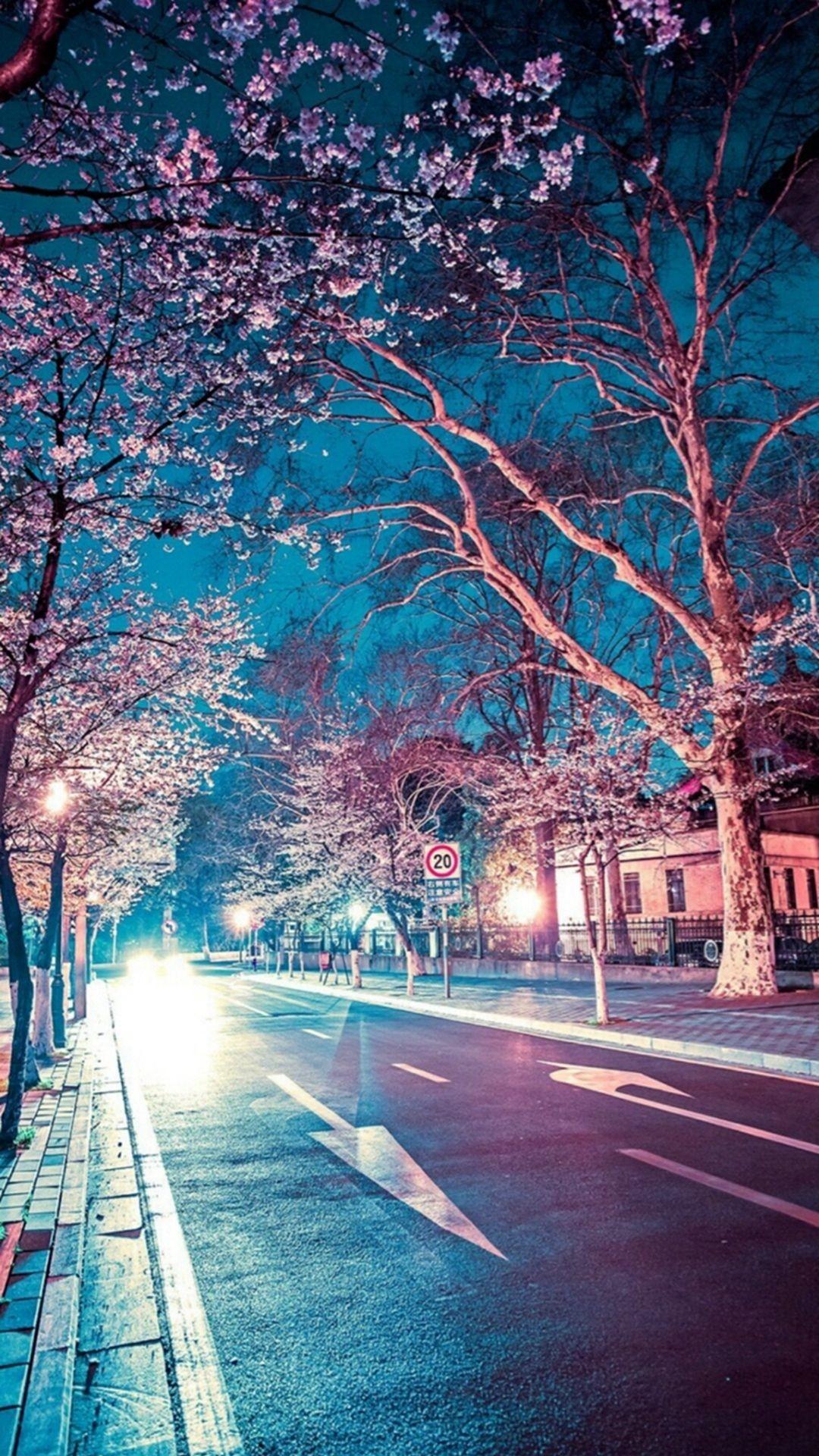 Res: 1080x1920, Japanese Street Cherry Blossom Night Scenery iPhone 6 wallpaper