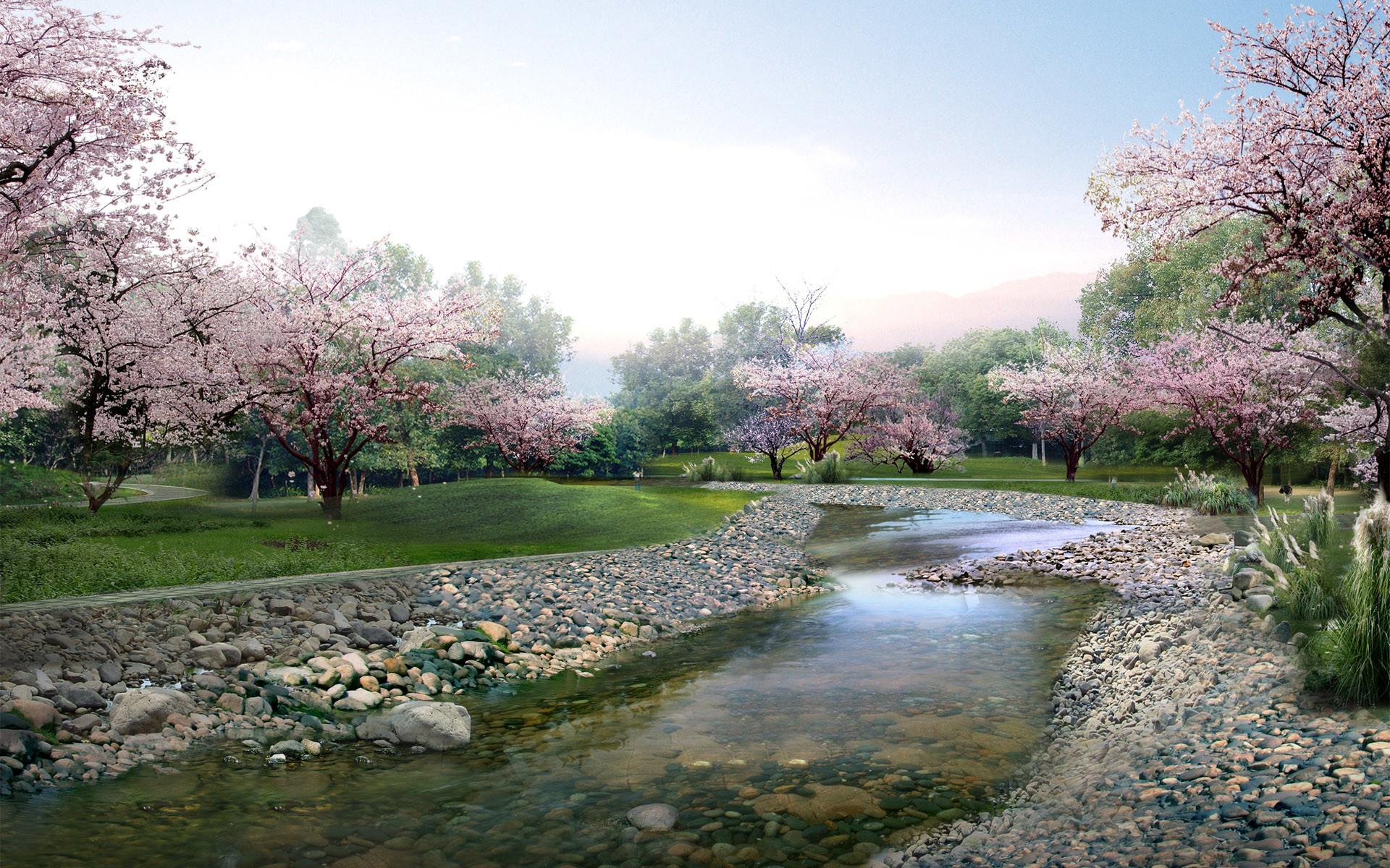 Res: 1920x1200, Japan Sakura Wallpaper 51329