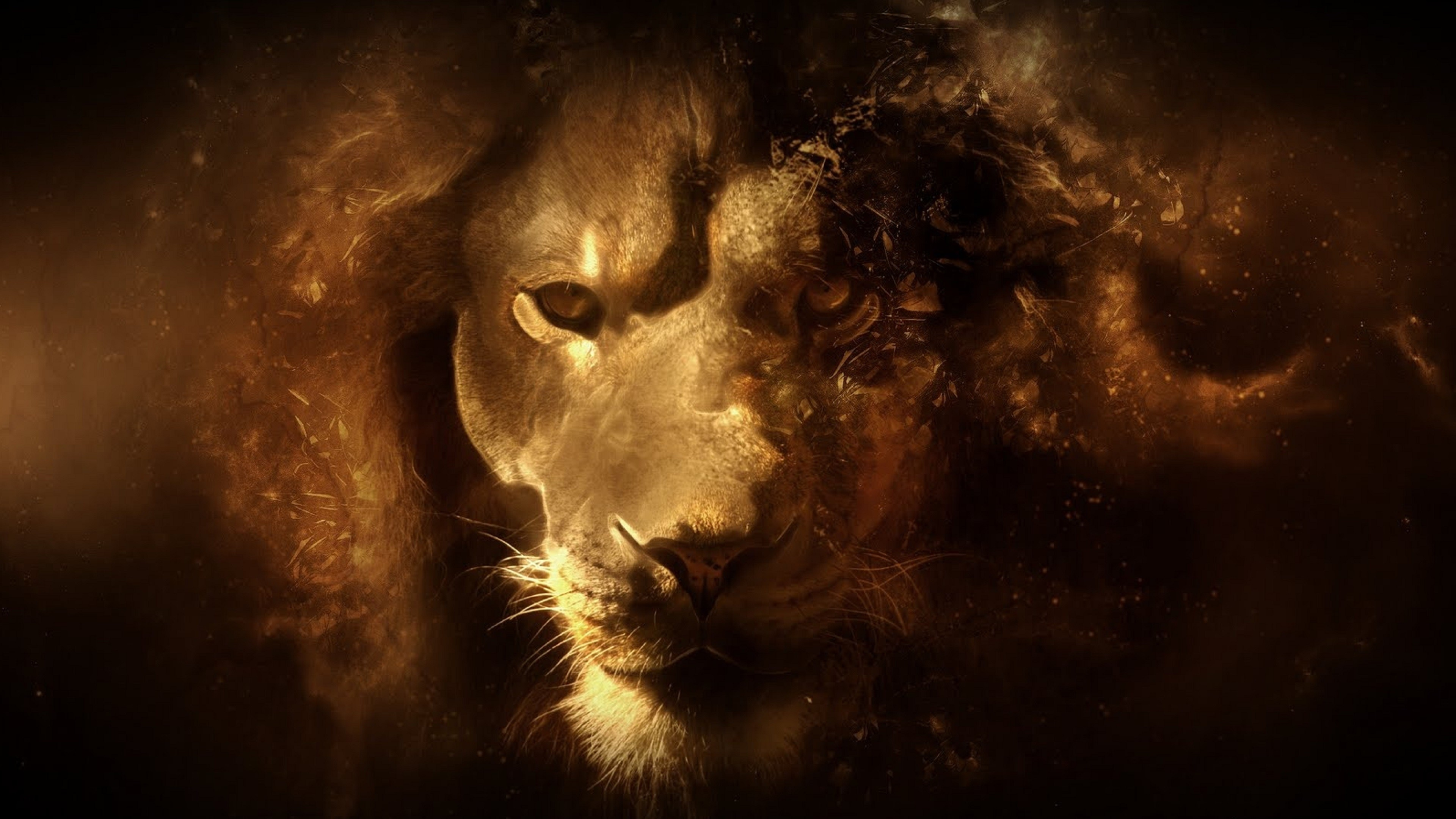 Res: 3840x2160, Lion Face - Digital Art Wallpaper   Wallpaper Studio 10   Tens of thousands  HD and UltraHD wallpapers for Android, Windows and Xbox