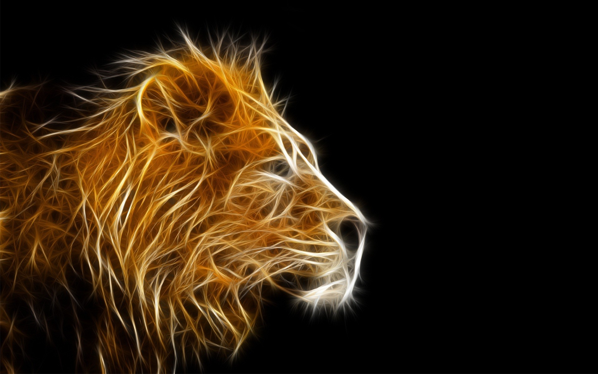 Res: 1920x1200, Lion face on black background animal wallpapers