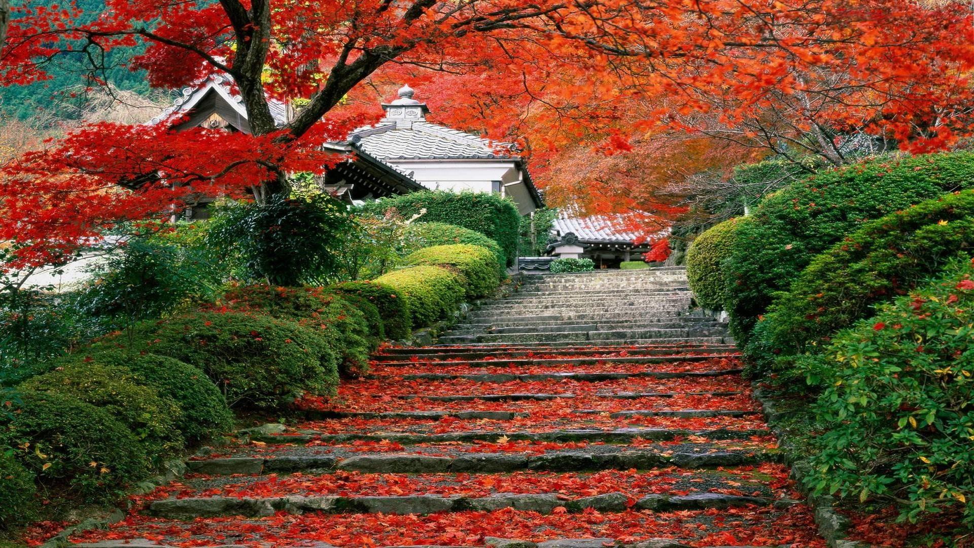 Res: 1920x1080, Download Japan Landscapes Wallpaper  | Wallpoper #370287