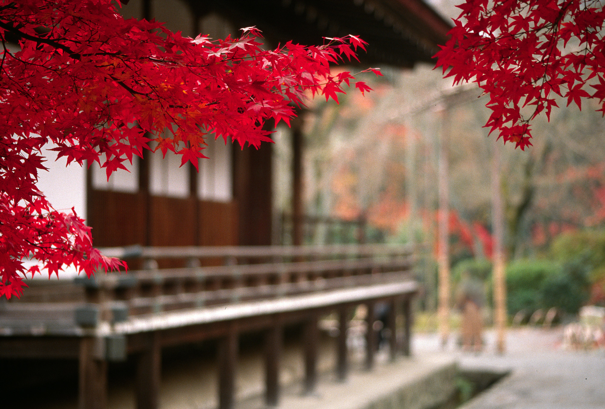 Res: 2000x1353, Japanese Temple Scenery Wallpapers