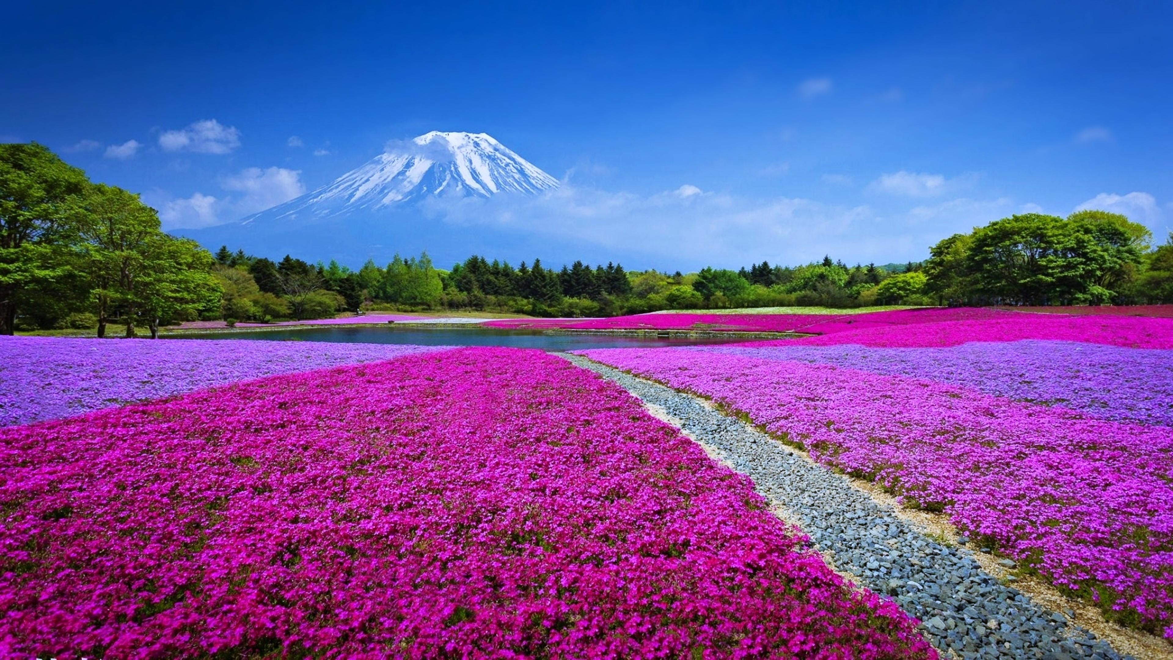 Res: 3840x2160, Mount Fuji Landscape, Japan Wallpaper | Wallpaper Studio 10 | Tens of  thousands HD and UltraHD wallpapers for Android, Windows and Xbox