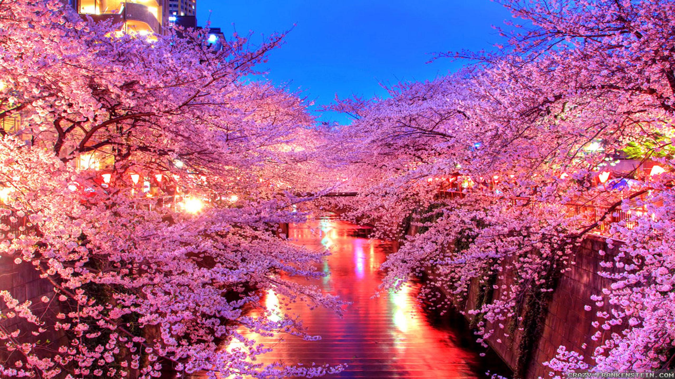 Res: 2560x1440, Japan Wallpaper HD
