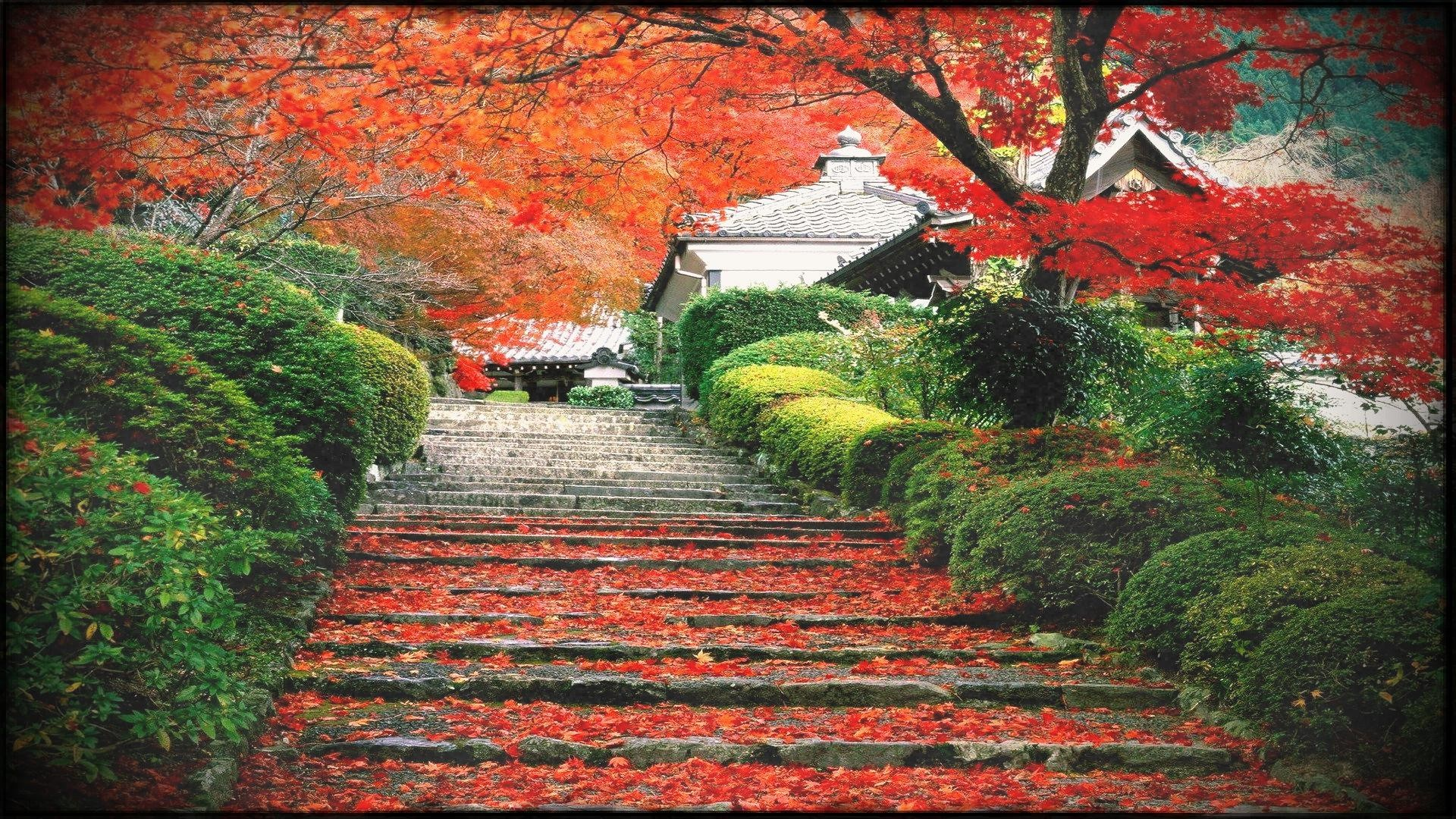 Res: 1920x1080, Japan Landscape Fall Cherry Trees Stairs Leaves Wallpapers Hd