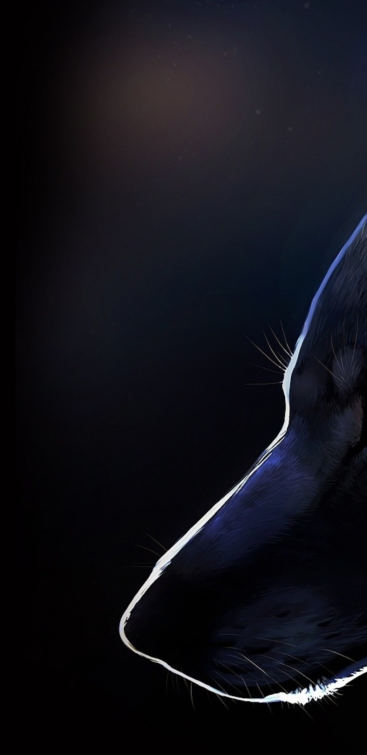Res: 1440x2960, Wolf, Profile View, Majestic, Red Eyes, Furry