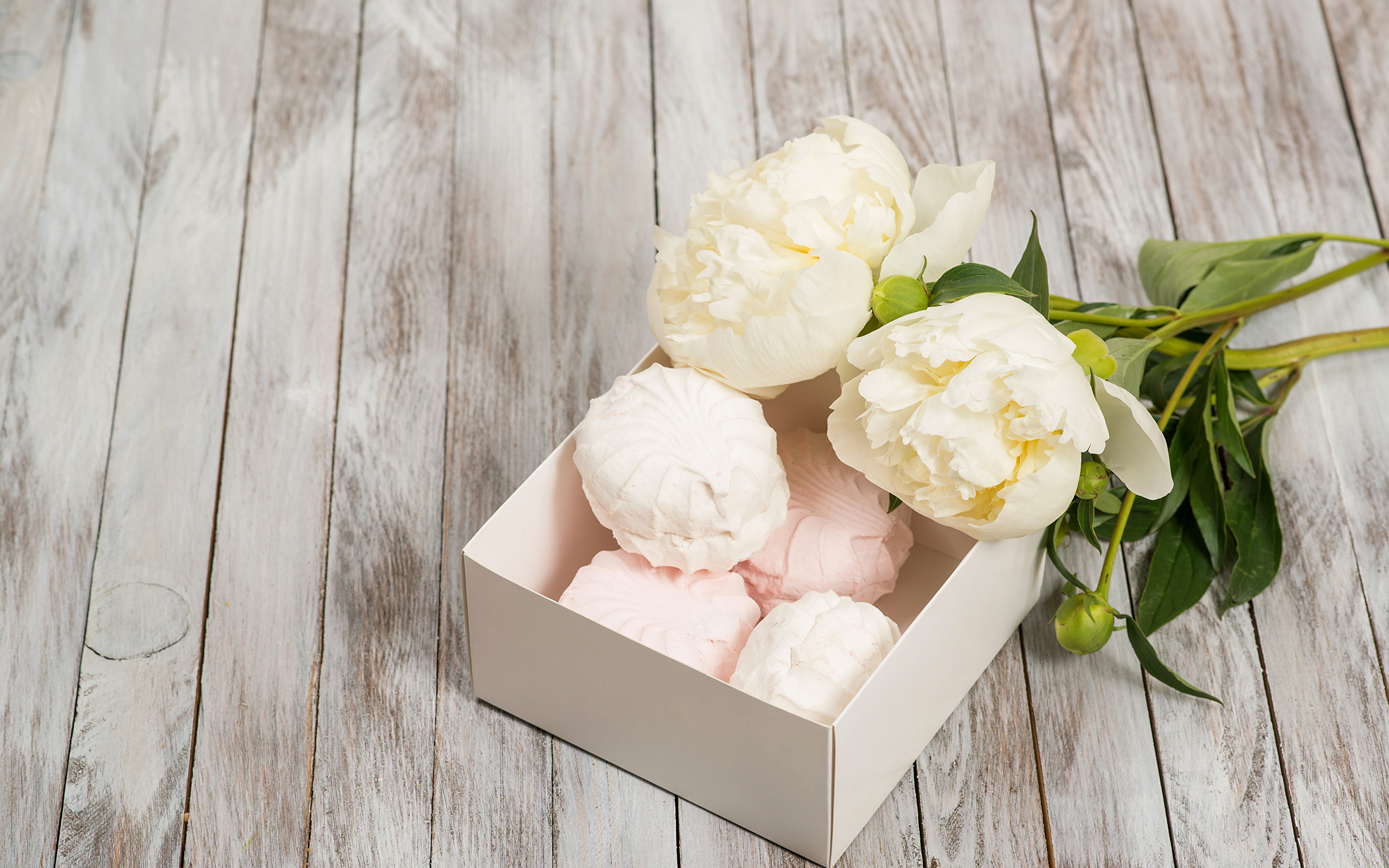 Res: 2880x1800, Wallpaper 2 White Zefir Flowers Peonies Sweets  Two