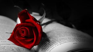 Gothic Roses wallpapers