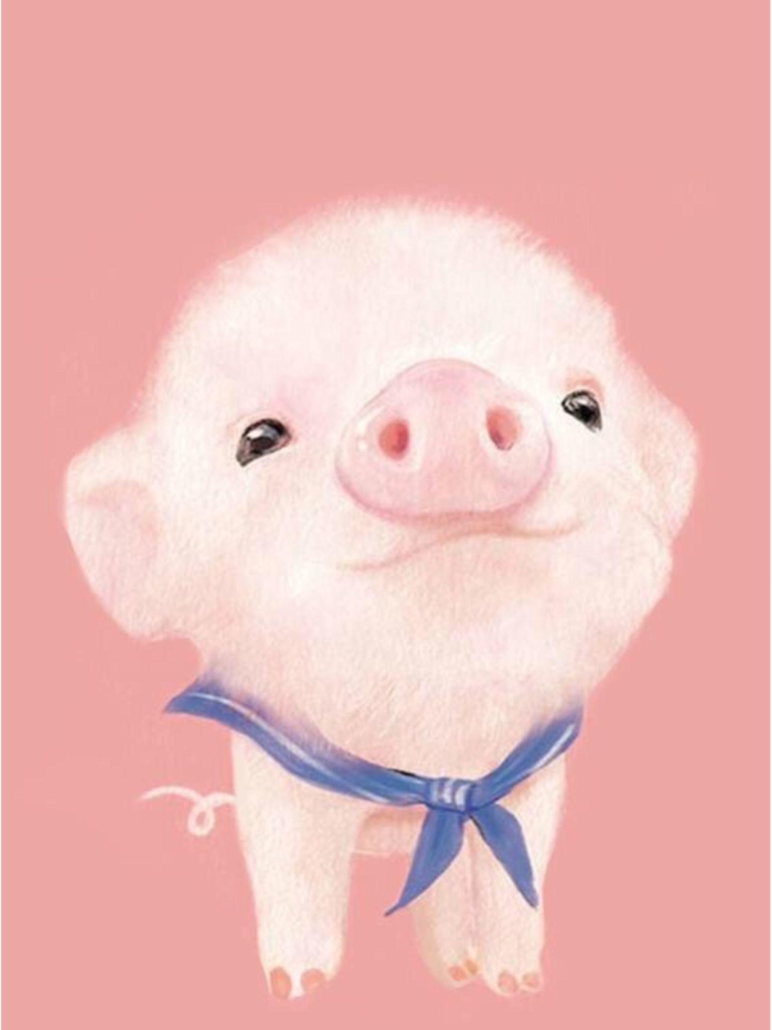 Res: 1536x2048, Cute pig wallpaper