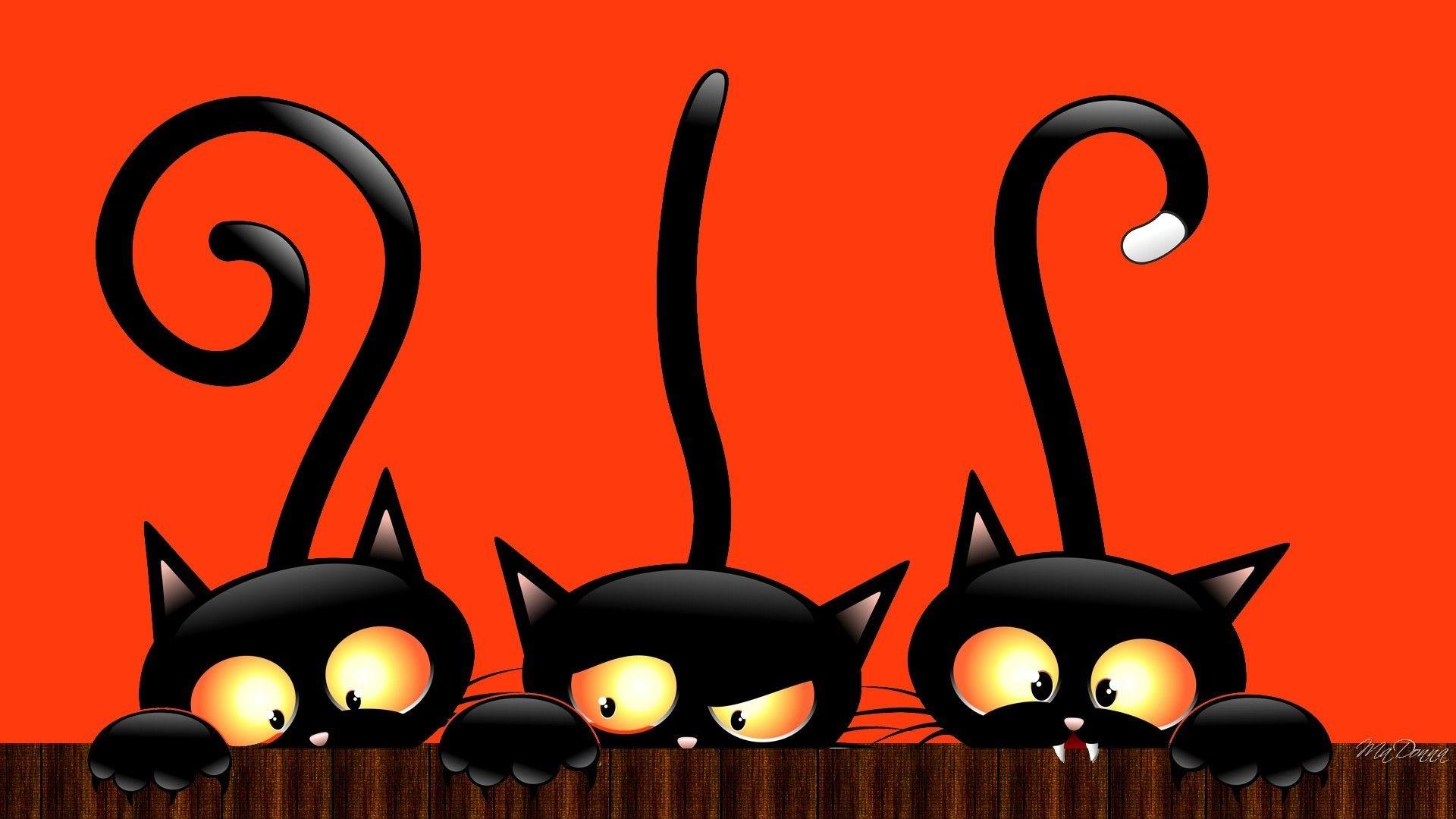 Res: 1920x1080, Happy Halloween cat