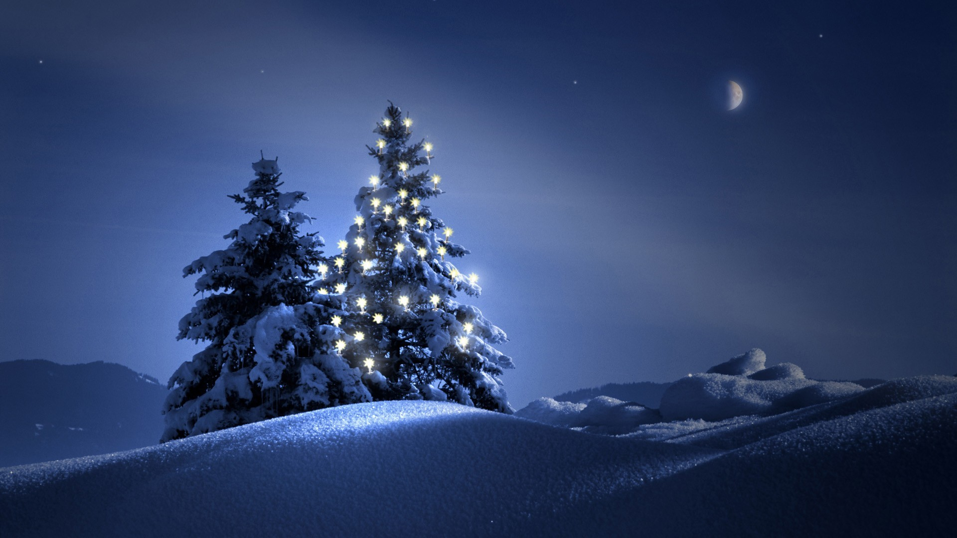 Res: 1920x1080, Christmas Tree On Snow Wallpaper Wide Wallpaper