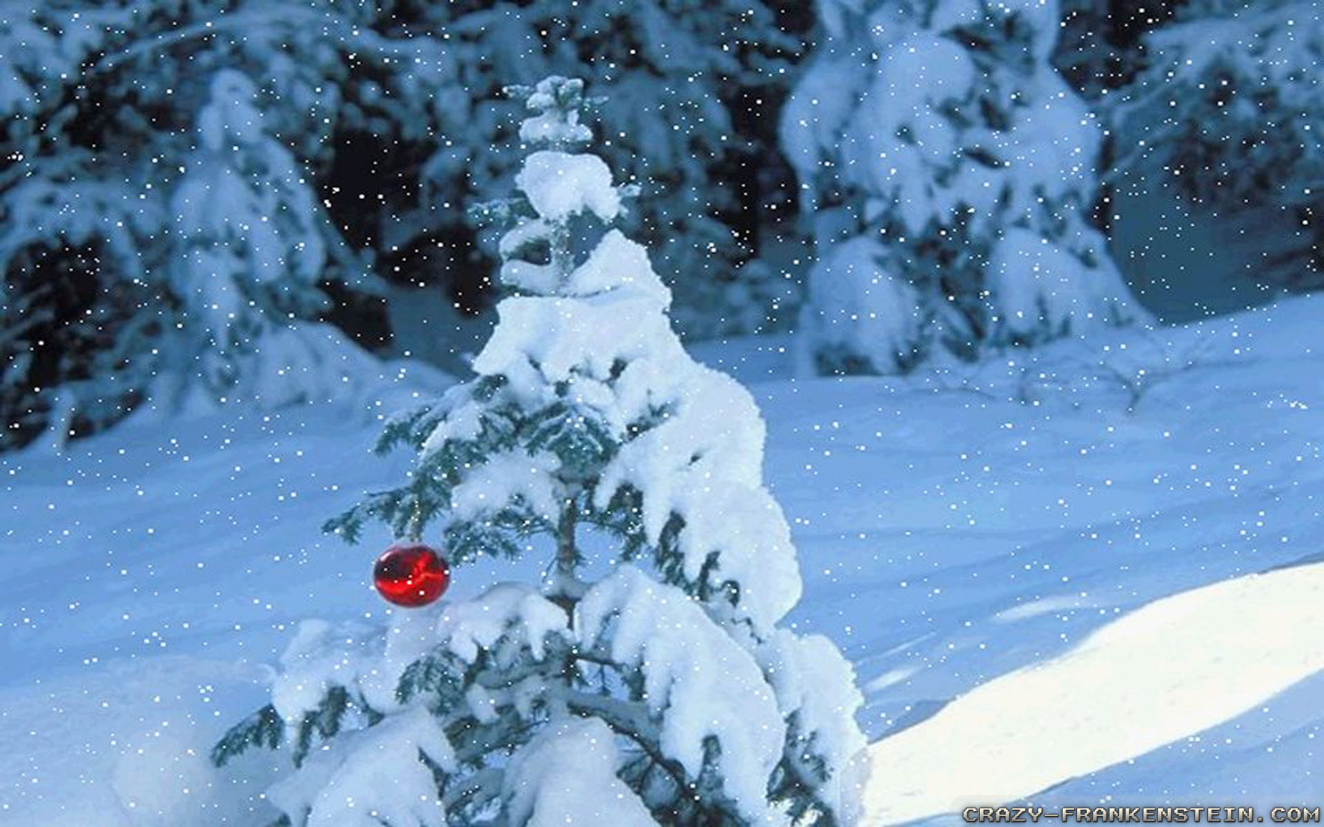Res: 1920x1200, Wallpaper: Tree decoration Winter Scenes Resolution: 1024x768 | 1280x1024 |  1600x1200. Widescreen Res: 1440x900 | 1680x1050 |