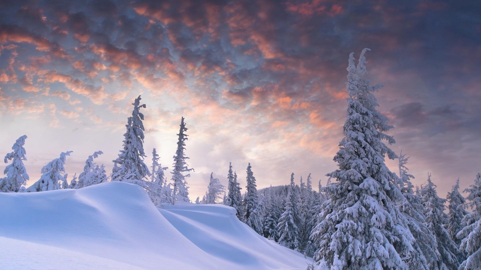 Res: 1920x1080, Outstanding winter scene wallpaper