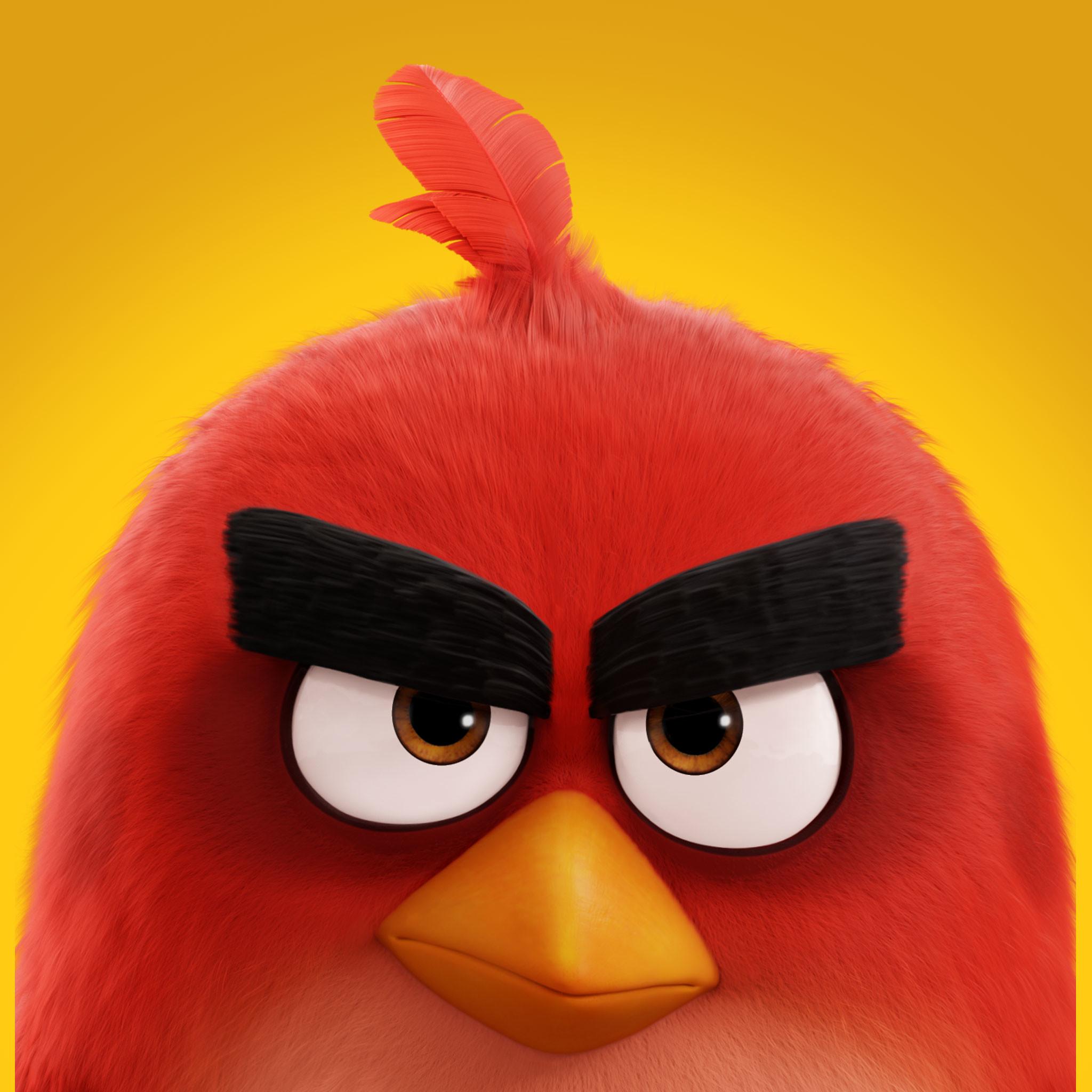 Res: 2048x2048, Red-iPad-Wallpaper ...