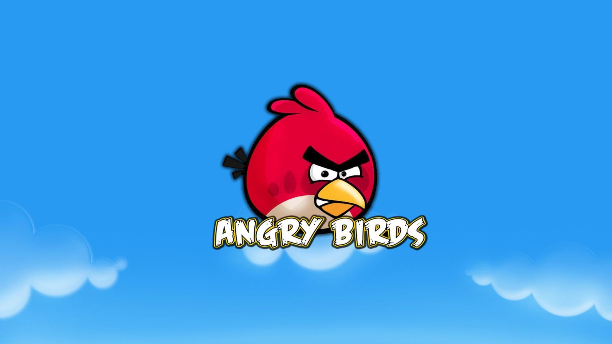 Res: 2560x1440, Red Bird HD Wallpaper