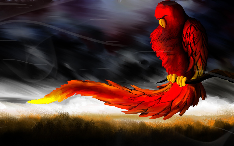 Res: 2880x1800, Phoenix Bird HD Photos.