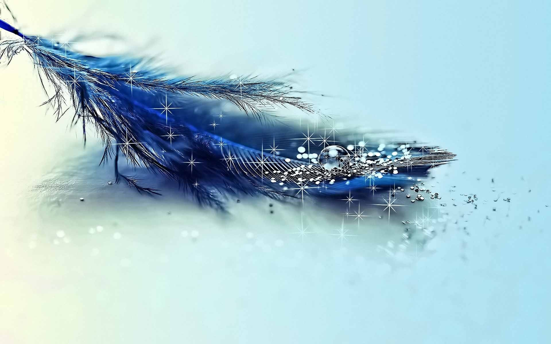 Res: 1920x1200, Blue Feather and Glitter Wallpaper