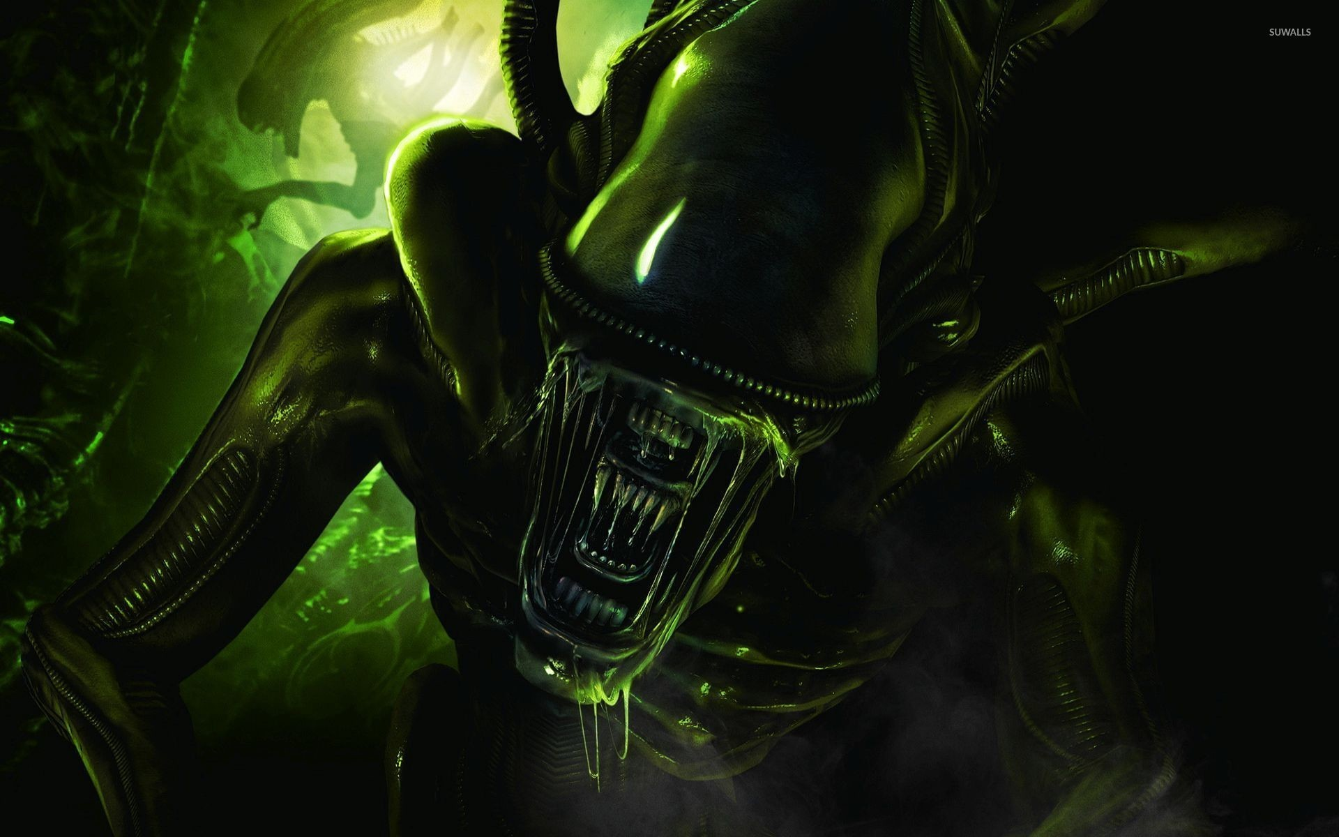 Res: 1920x1200,  Scary green alien wallpaper  jpg