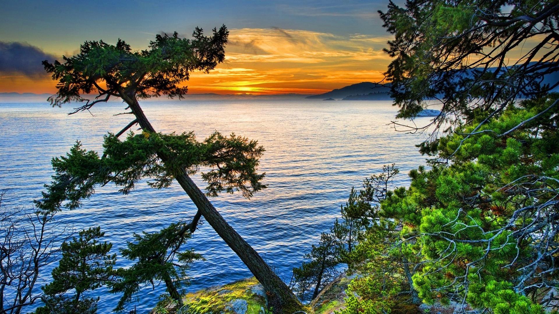 Res: 1920x1080, Lake Sunset Pine Tree Wallpaper Hd