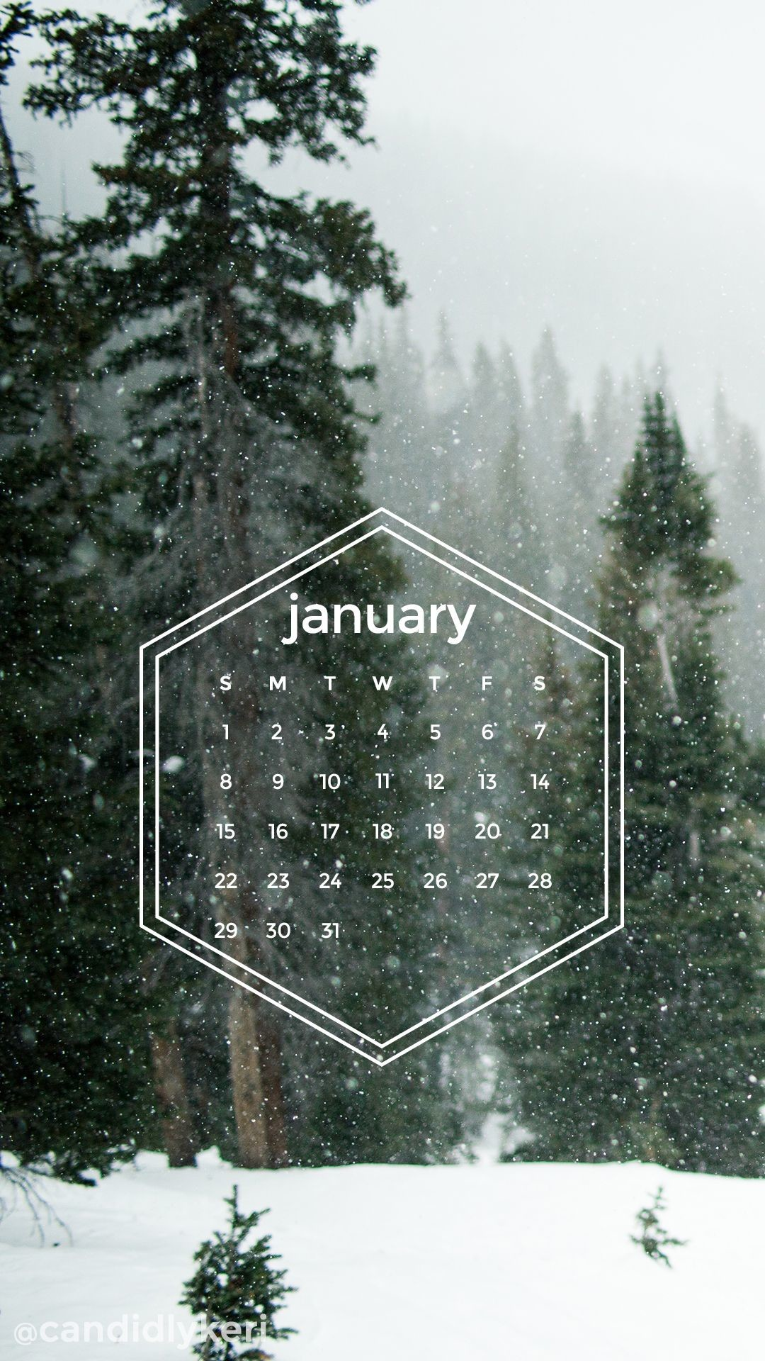 Res: 1080x1920, Snow forest pine trees snowing geometric January calendar 2017 wallpaper  you can download for free on
