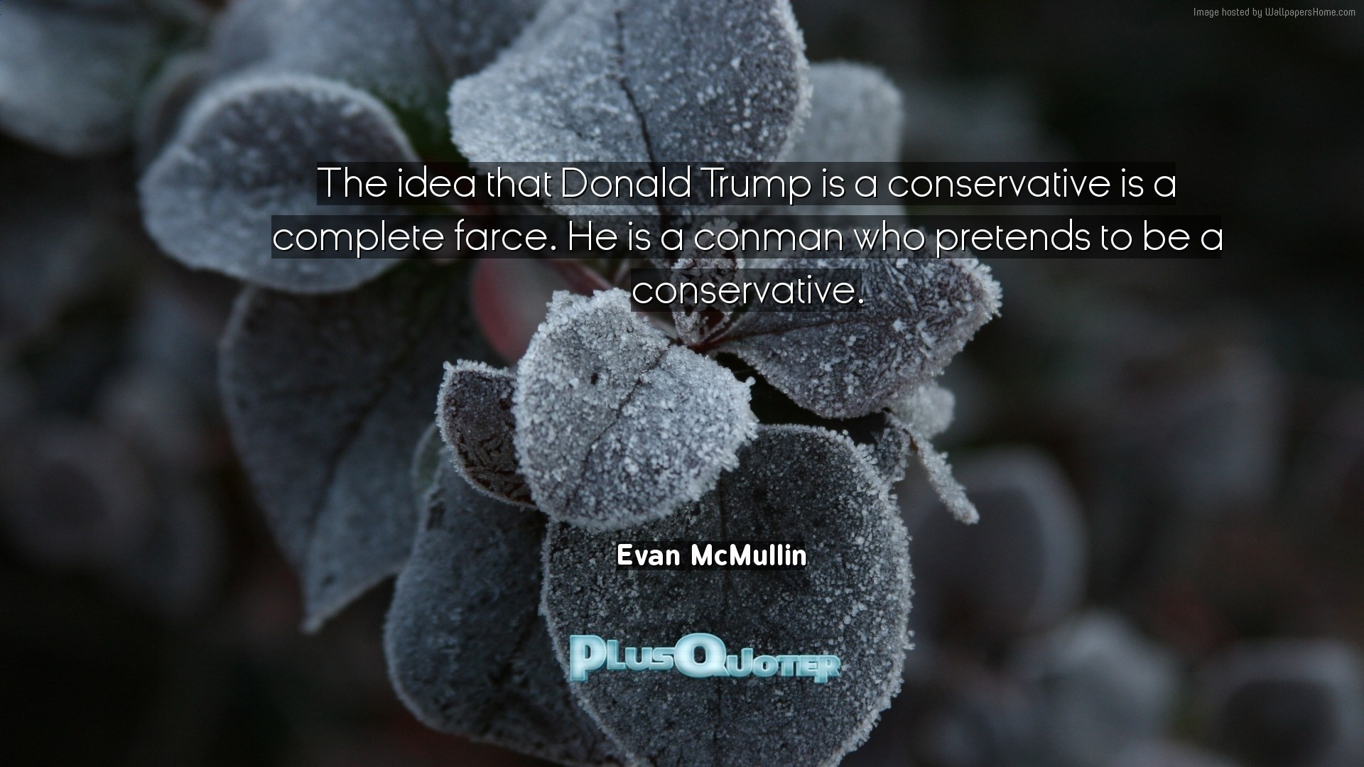 """Res: 1920x1080, Download Wallpaper with inspirational Quotes- """"The idea that Donald Trump  is a conservative is"""