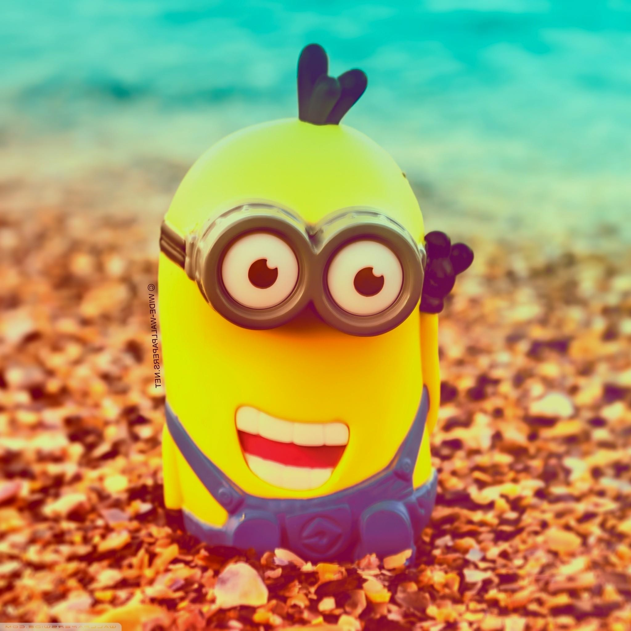 Live Minions Wallpapers HD Wallpaper Collections