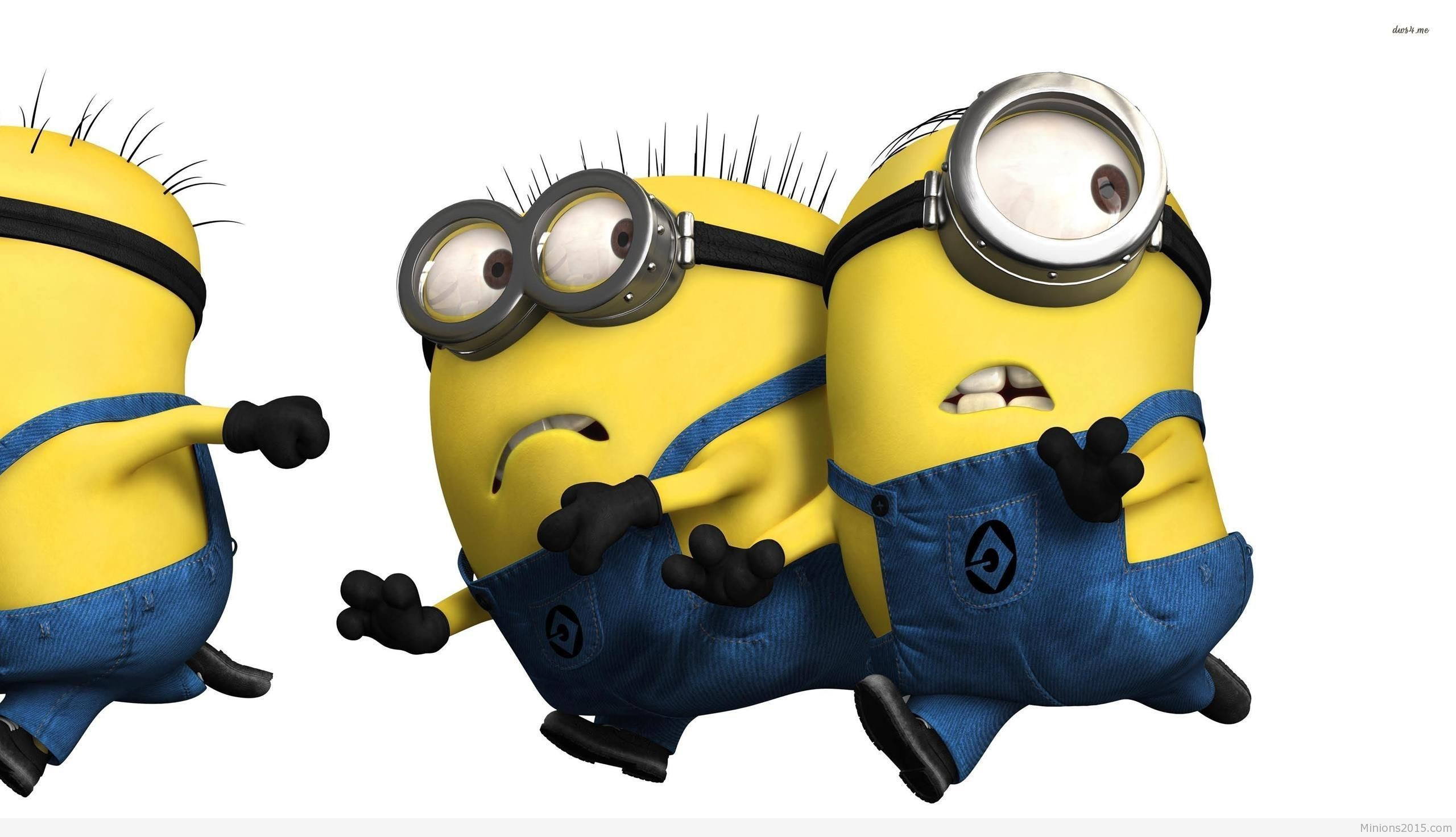 Res: 2560x1473, Top HDQ Live Minion Despicable Me Backgrounds Collection ( 1436×766