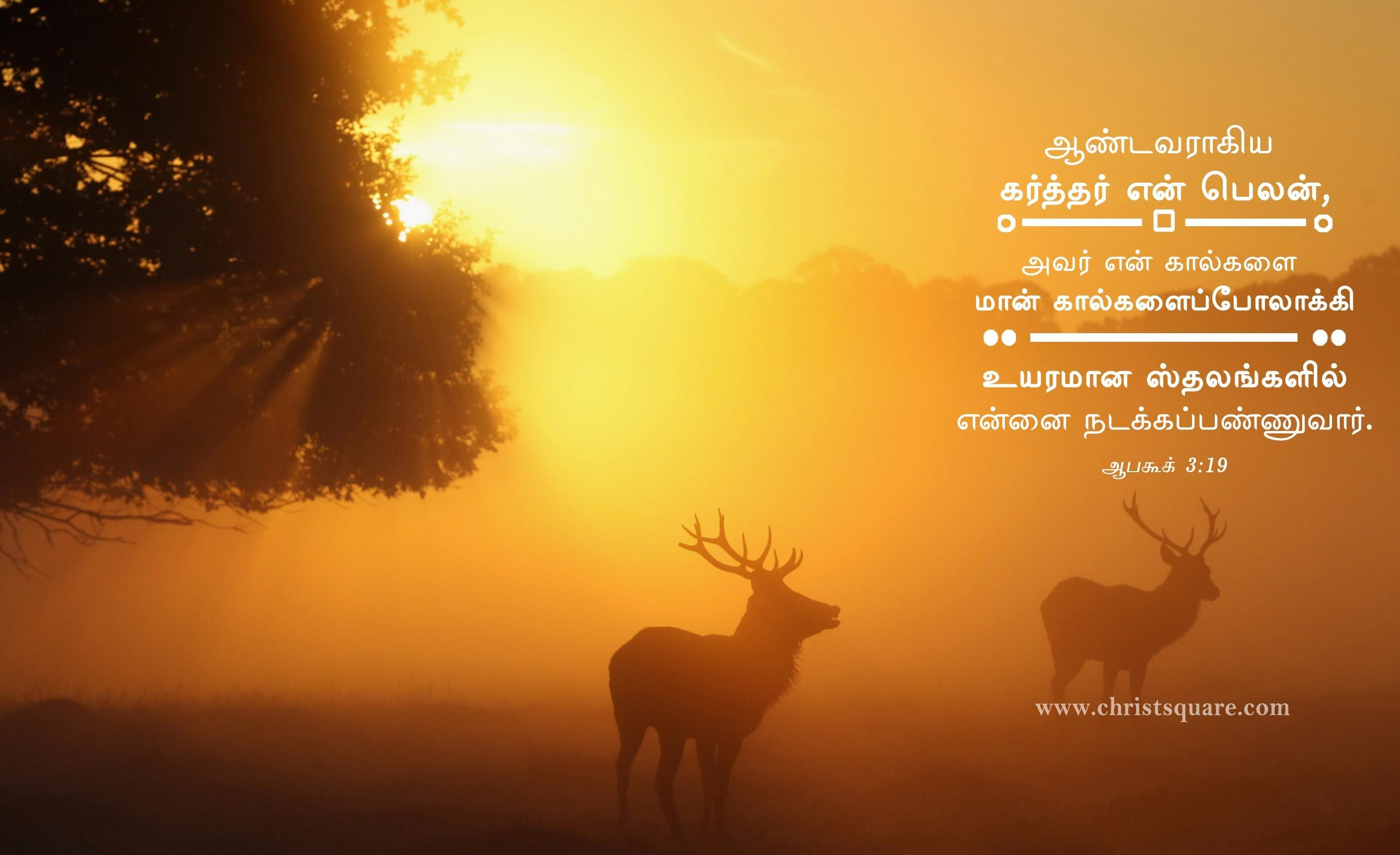 Res: 2760x1686, Tamil christian, tamil christian wallpaper, tamil christian wallpaper HD,  tamil christian words image