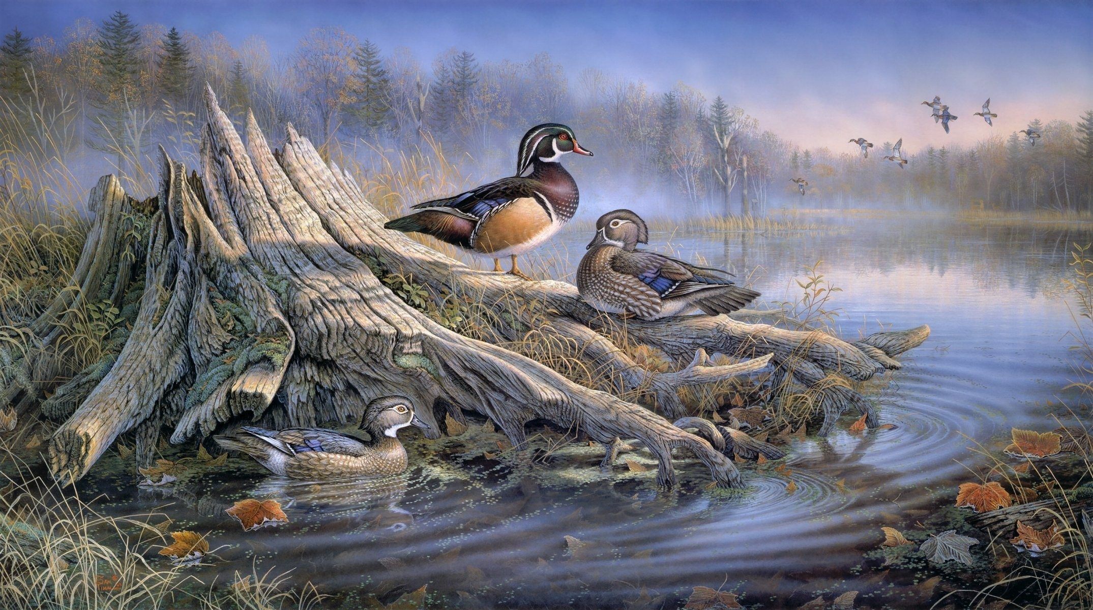 Res: 2149x1200, sam timm backyard solitude art painting duck autumn autumn leaves stump  water lake forest fog animal