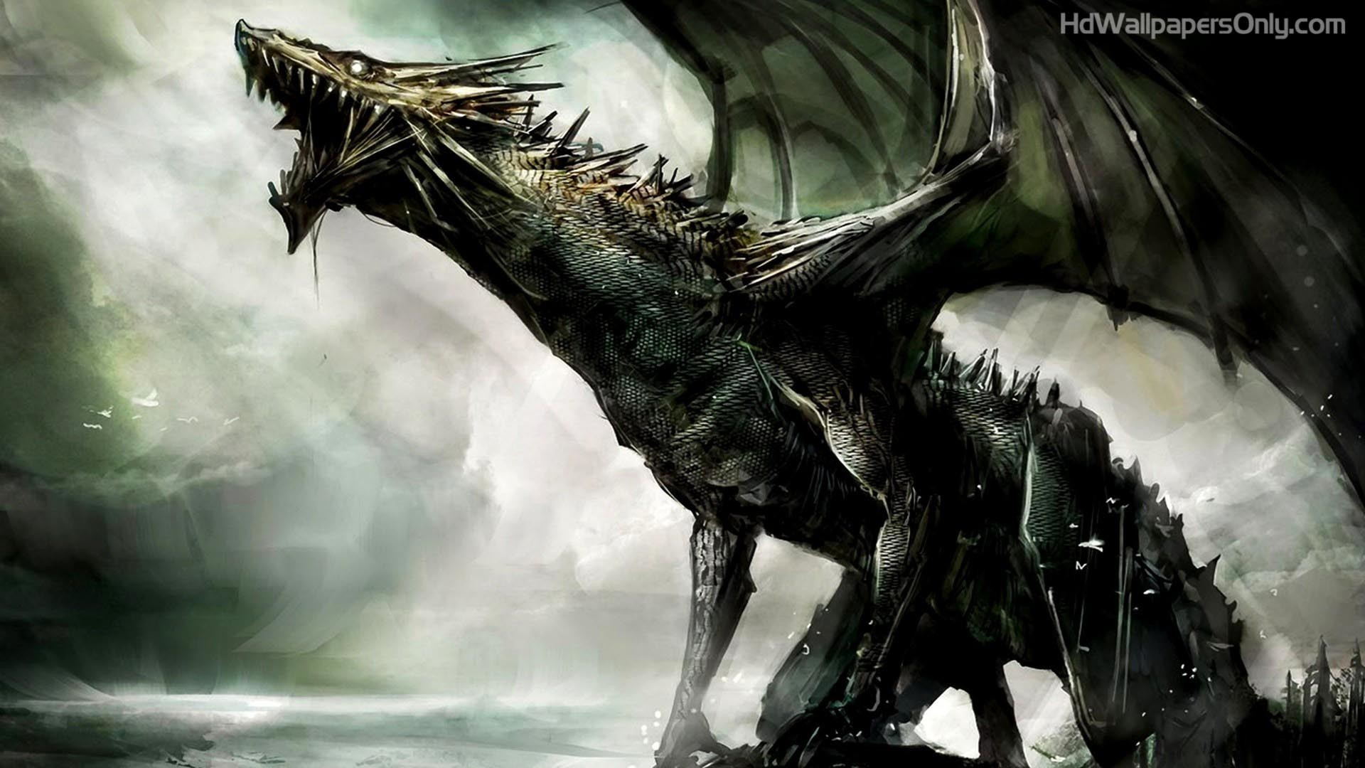 Res: 1920x1080, Black Dragon HD Wallpaper | 4hotos