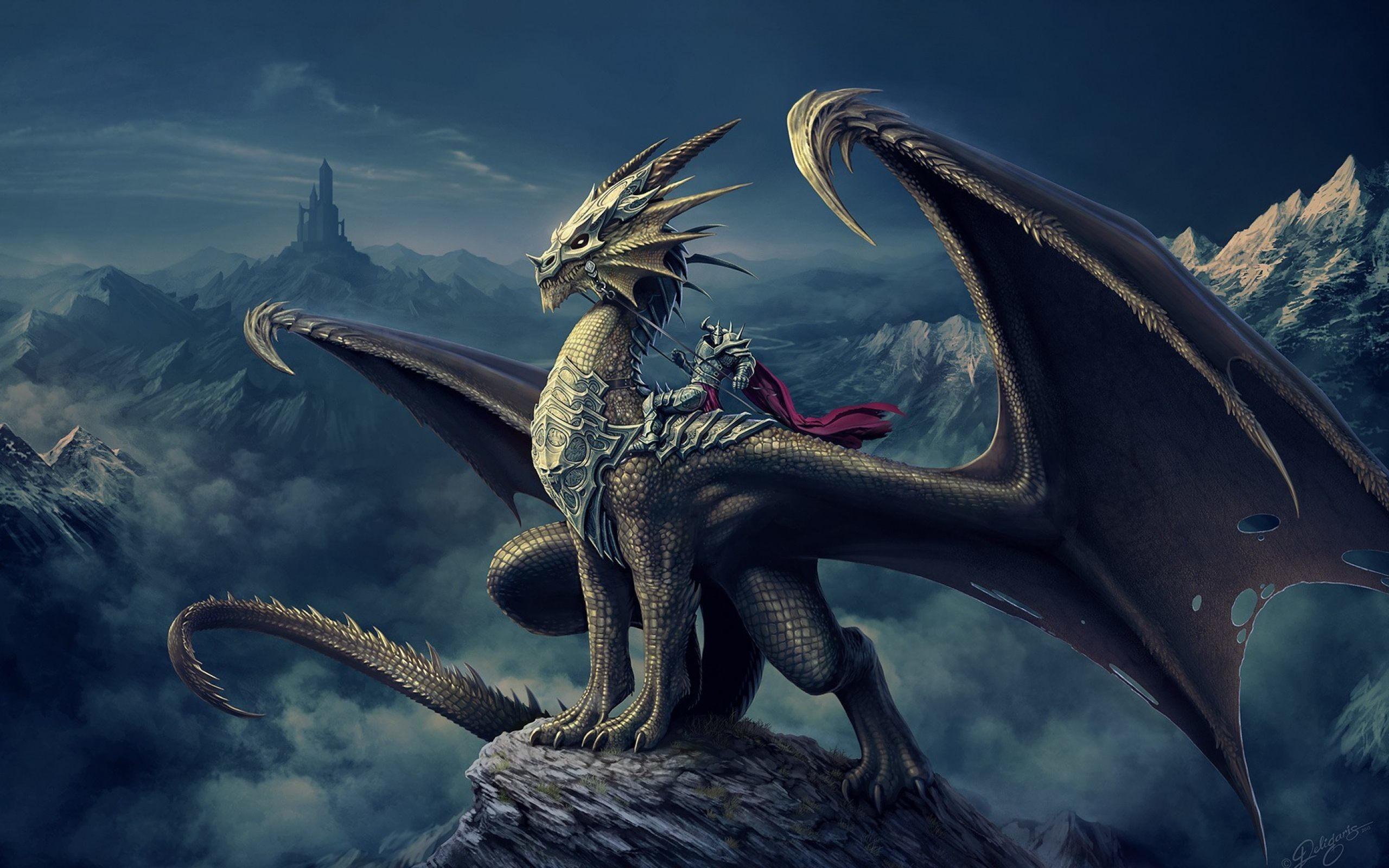 Res: 2560x1600, dragon warrior wallpaper