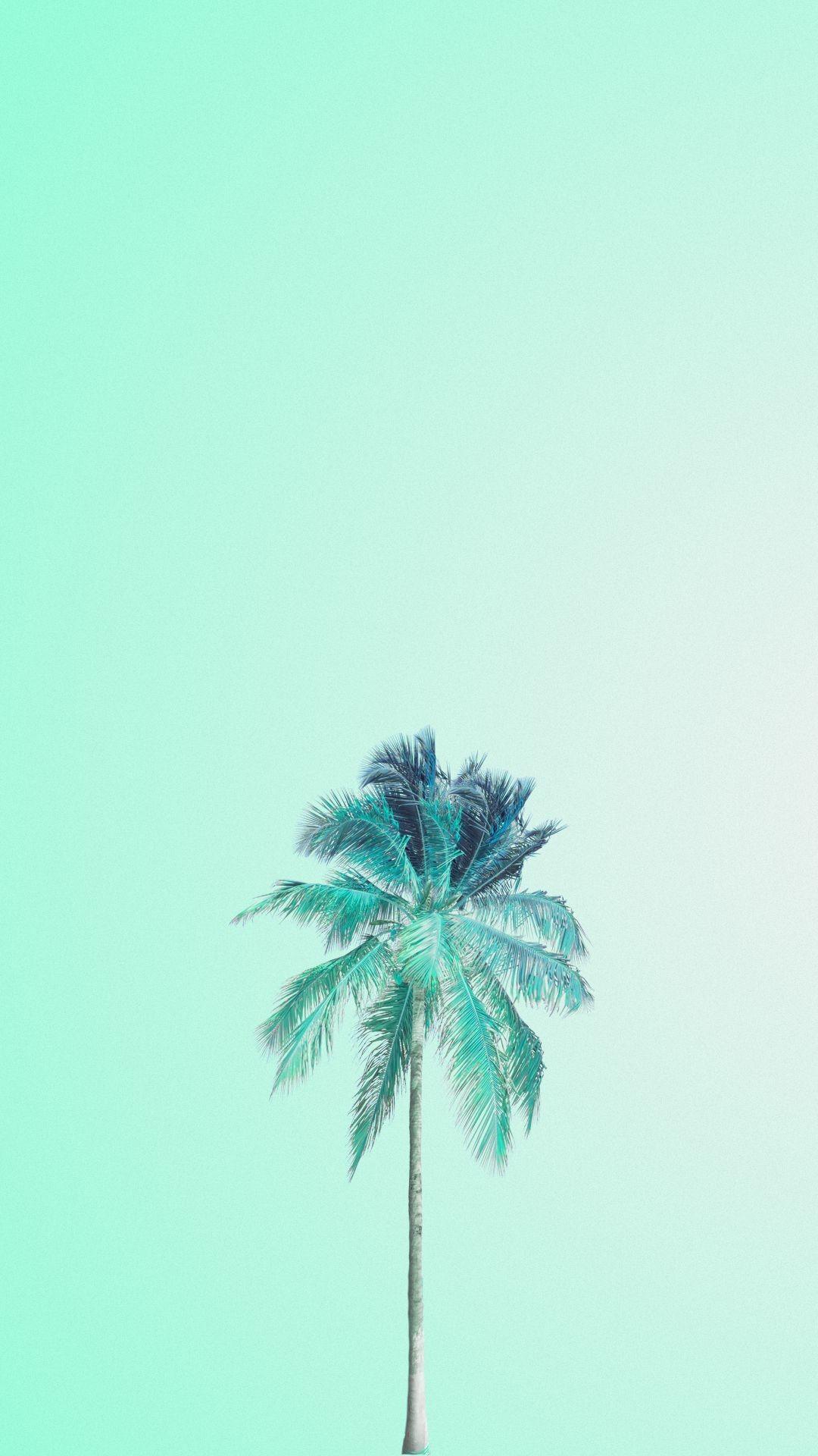 Res: 1080x1920, Mojito palm