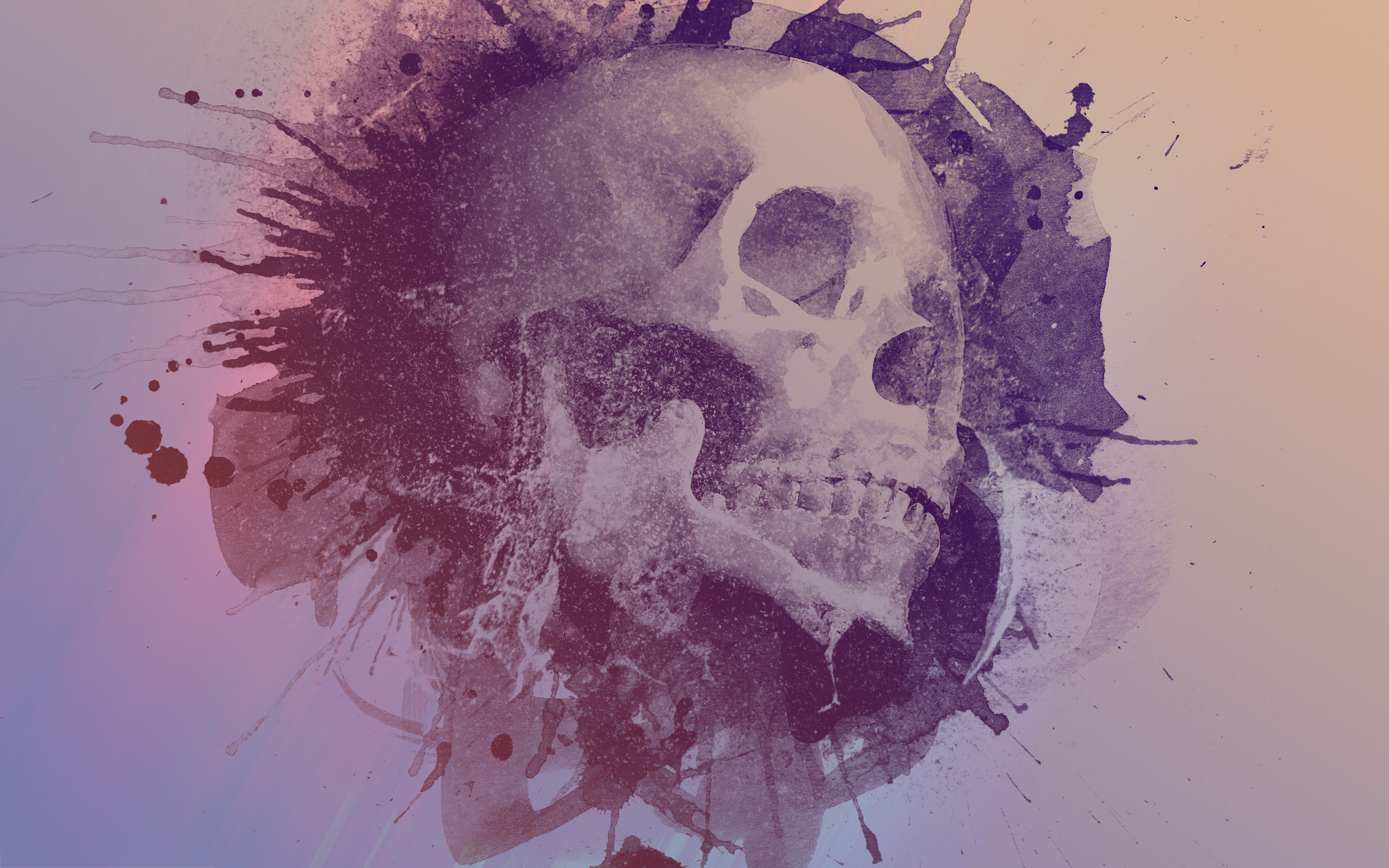 Res: 2560x1600, Skull Water Color Art