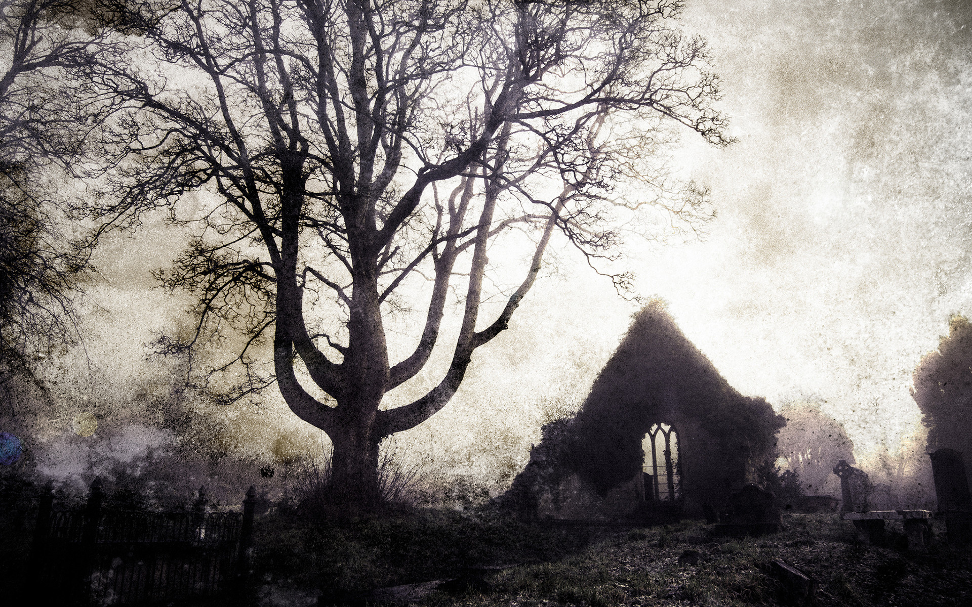 Res: 1920x1200, Tree Cemetery gothic buildings ruins cross landscapes wallpaper |   | 56236 | WallpaperUP